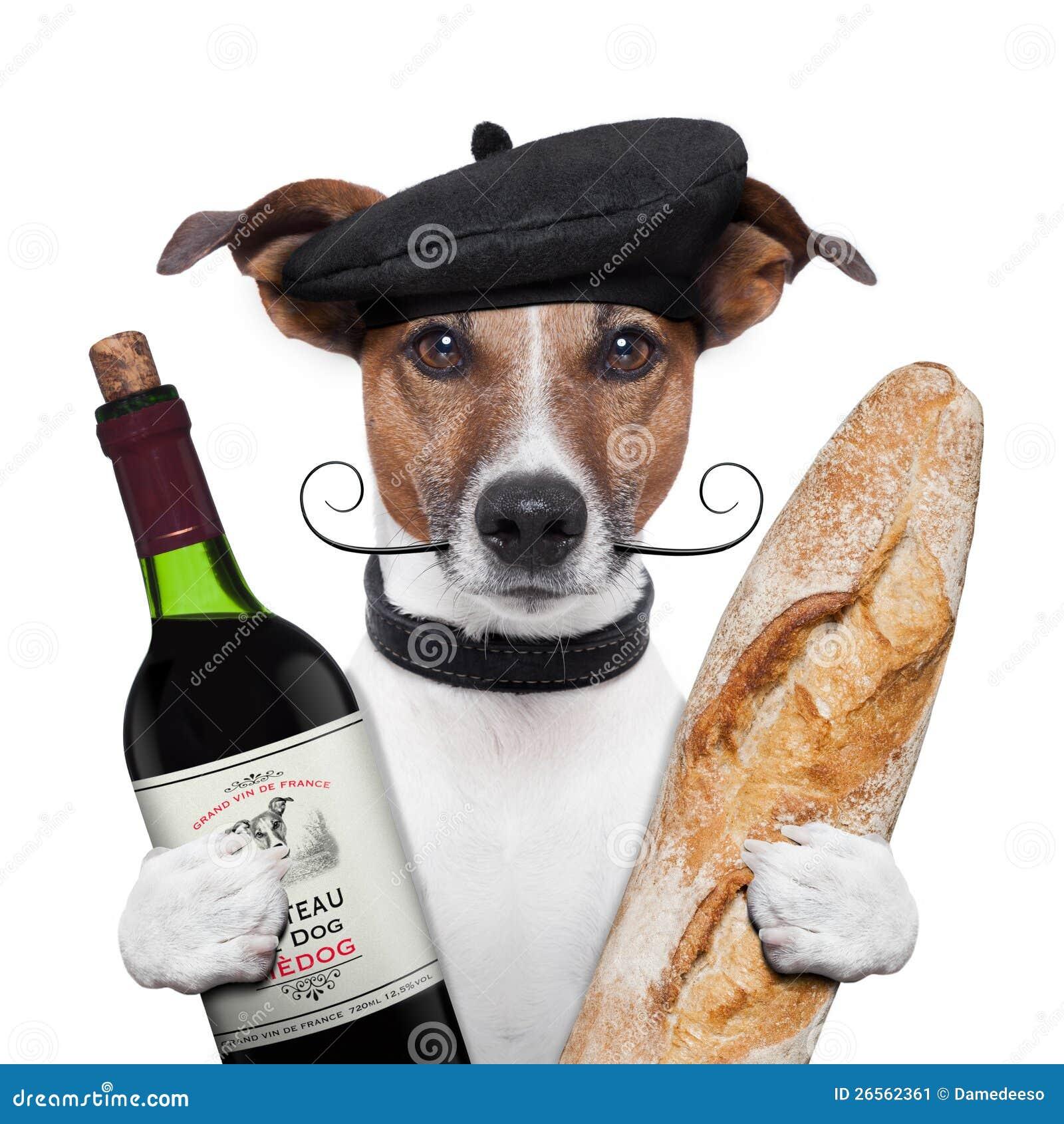 Γαλλικό beret κρασιού σκυλιών baguete