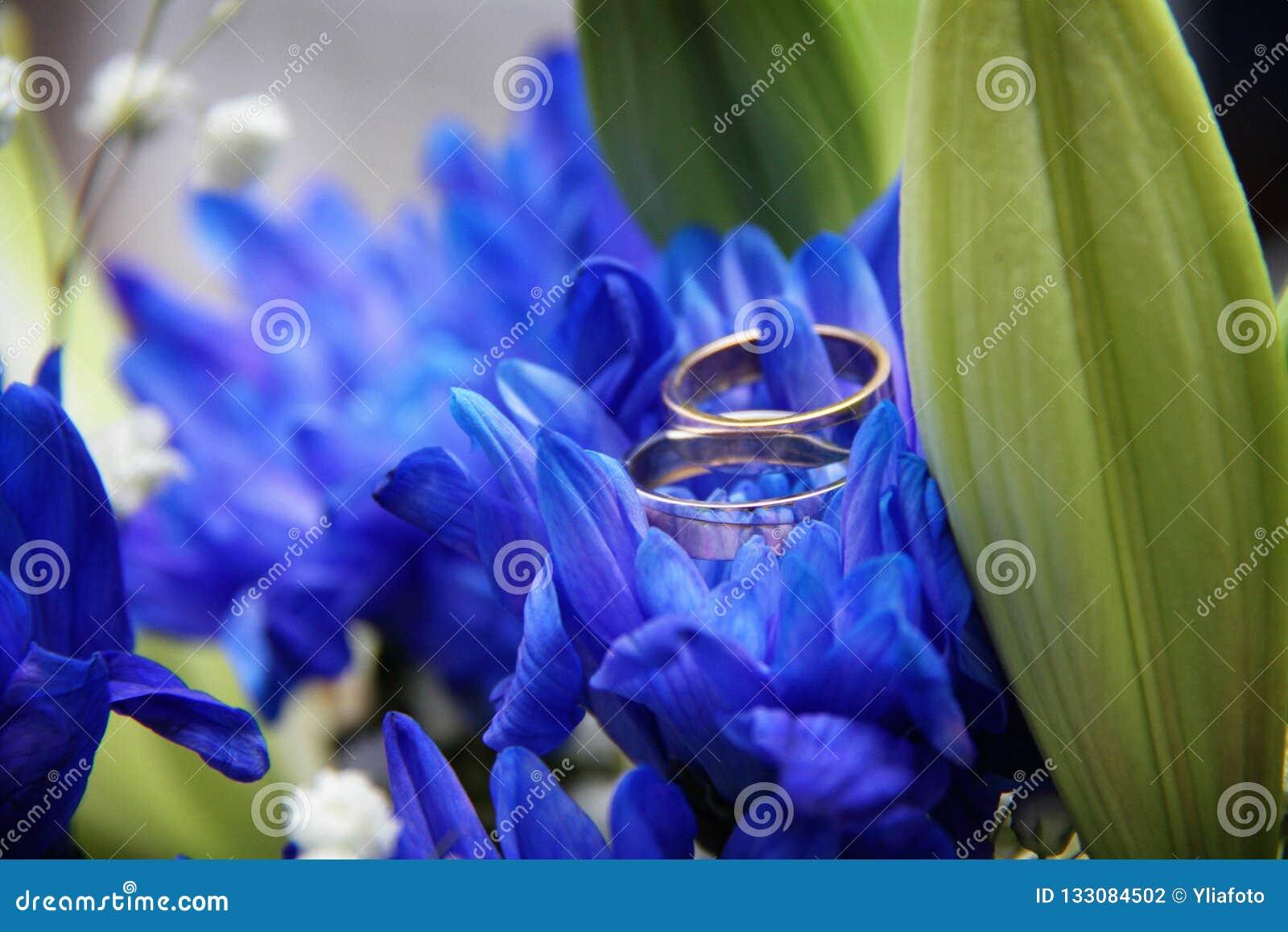 Γαμήλια δαχτυλίδια σε ένα μπλε