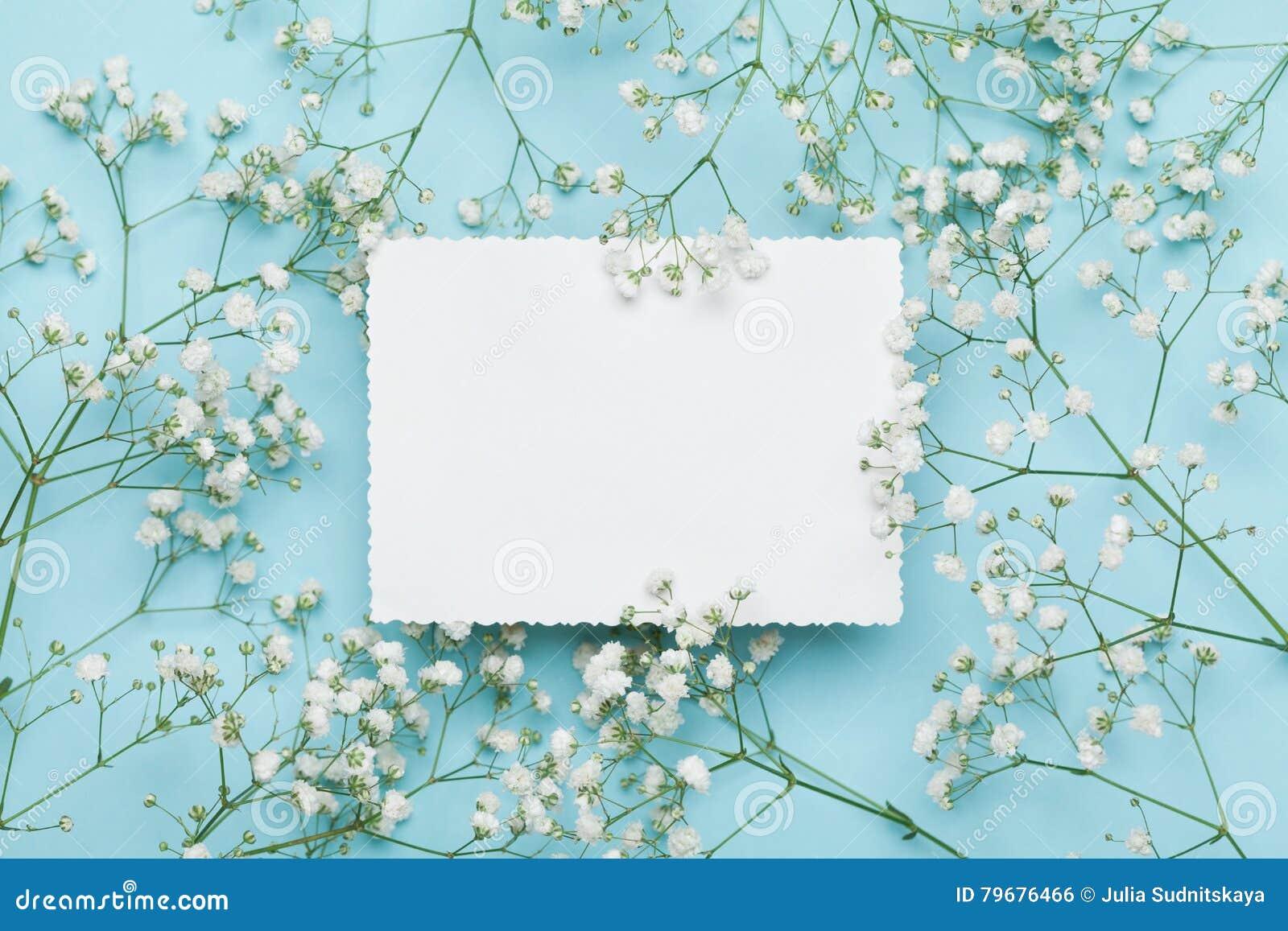 Γαμήλιο πρότυπο με τον κατάλογο της Λευκής Βίβλου και gypsophila λουλουδιών στον μπλε πίνακα άνωθεν όμορφο floral πρότυπο επίπεδο