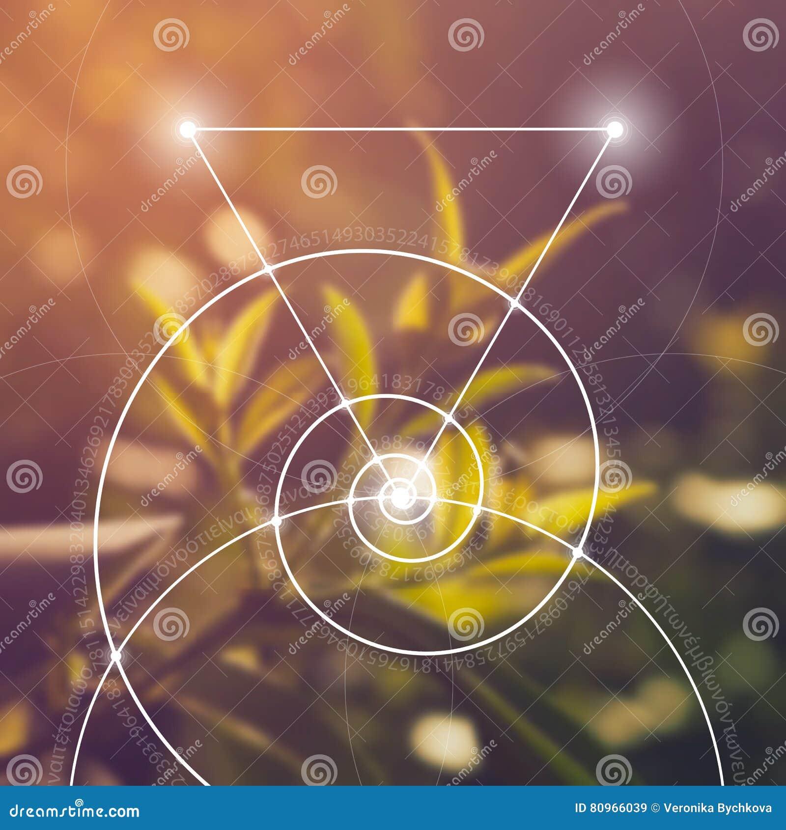 γεωμετρία ιερή Μαθηματικά, φύση, και πνευματικότητα στη φύση Ο τύπος της φύσης
