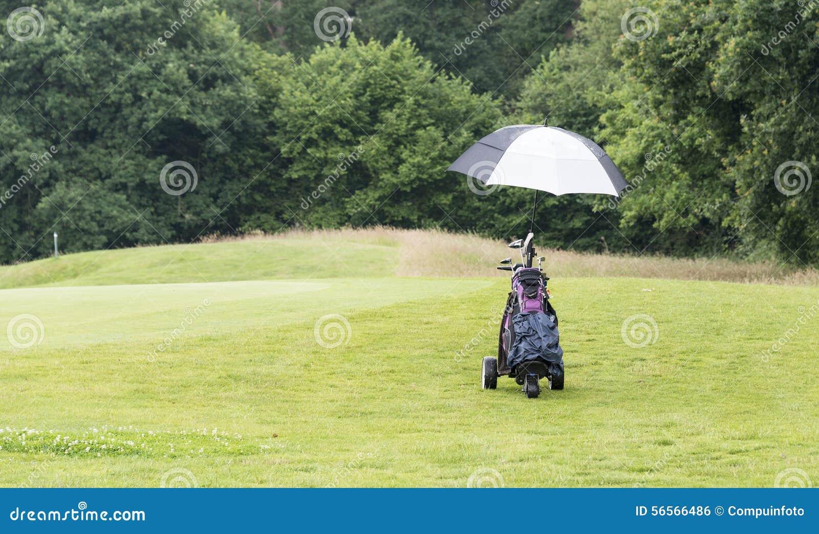 Download Γκολφ πίσω στην πράσινη χλόη Στοκ Εικόνες - εικόνα από πράσινος, ηλιόλουστος: 56566486