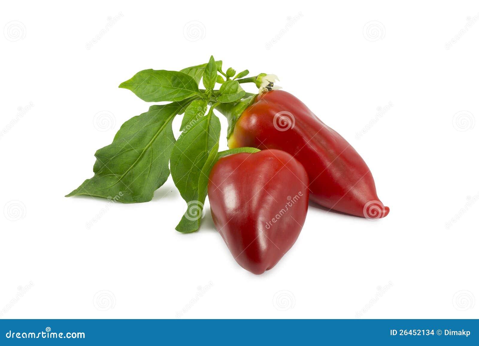 Γλυκά κόκκινα πιπέρια σε μια άσπρη
