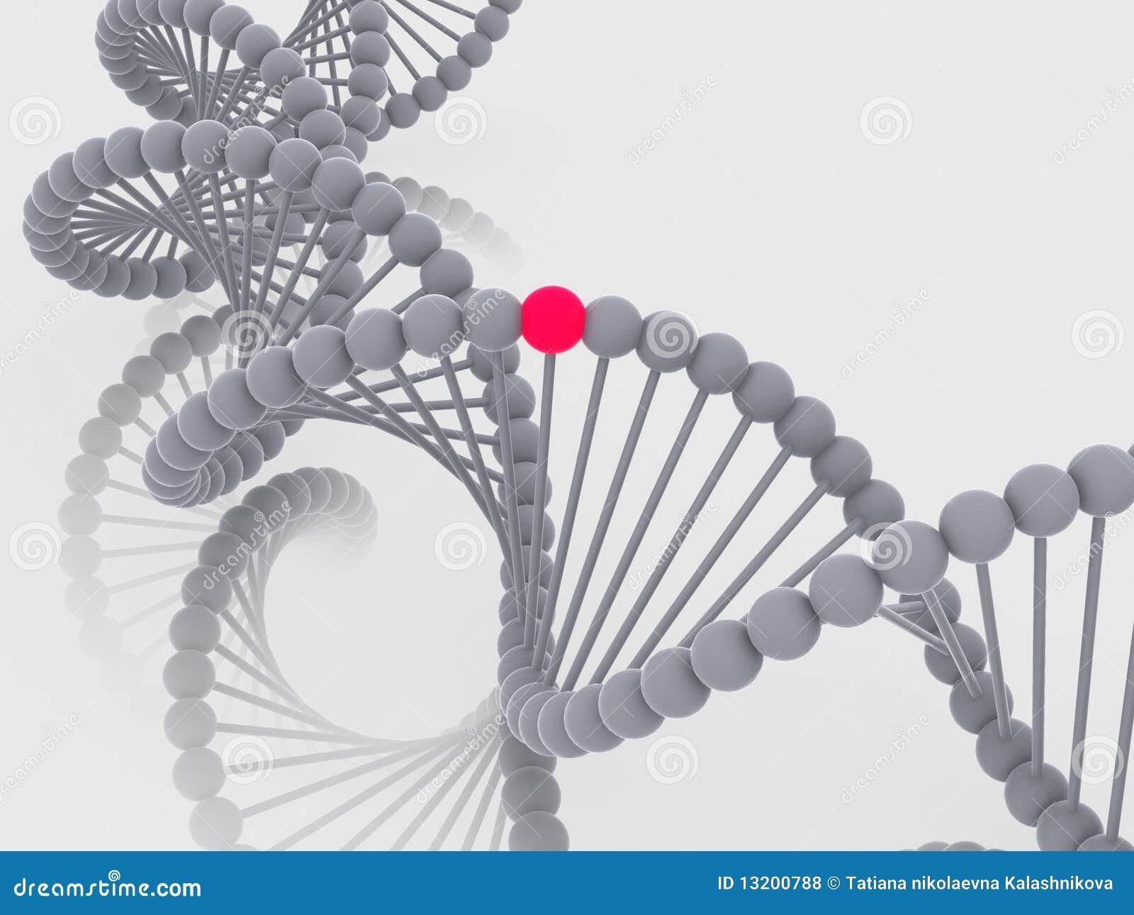 γονίδιο DNA