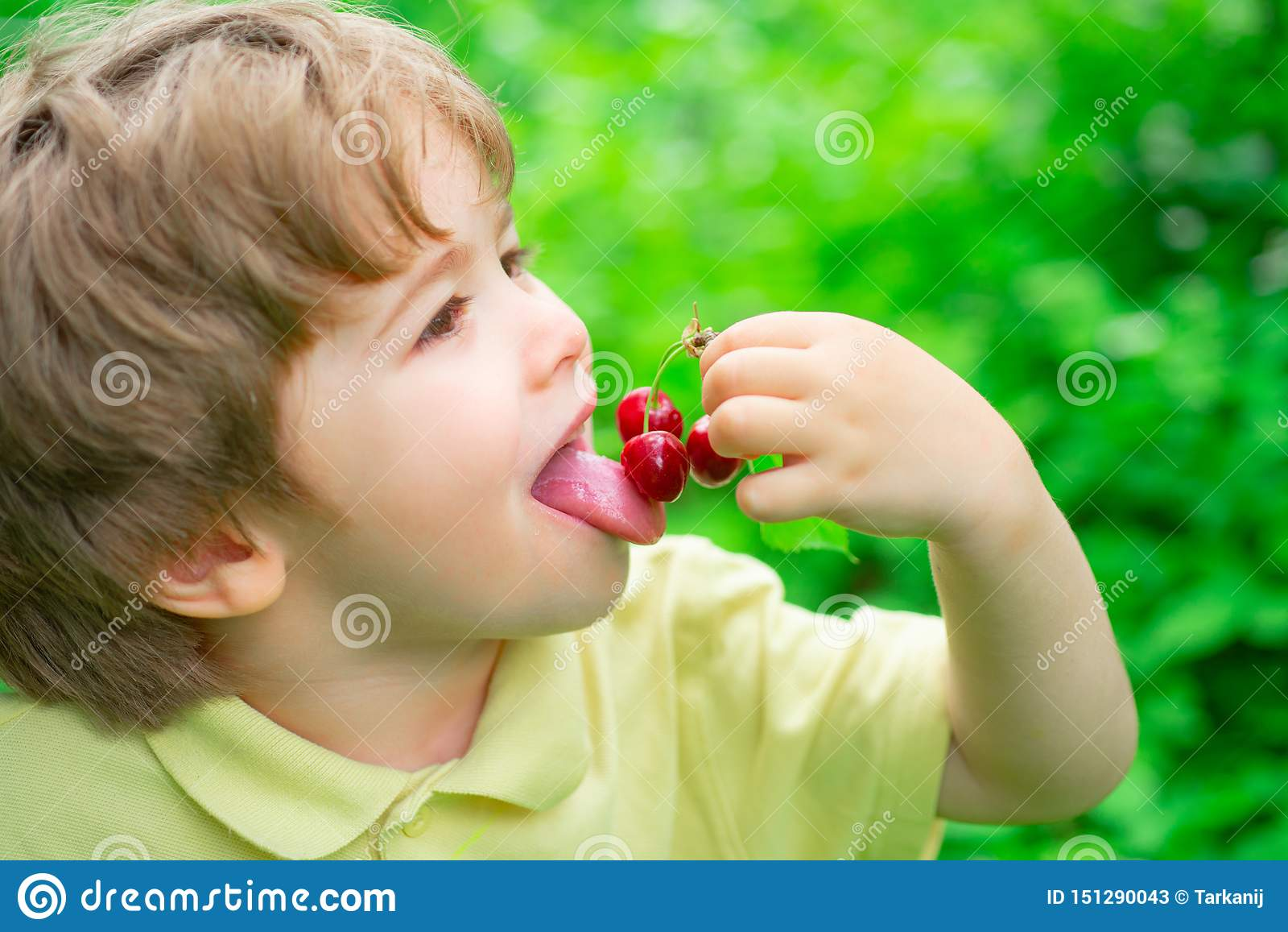 Γούστο κερασιών Το αγόρι τρώει τα θερινά φρούτα Εποχή κερασιών Φρούτα και μούρα για τα παιδιά