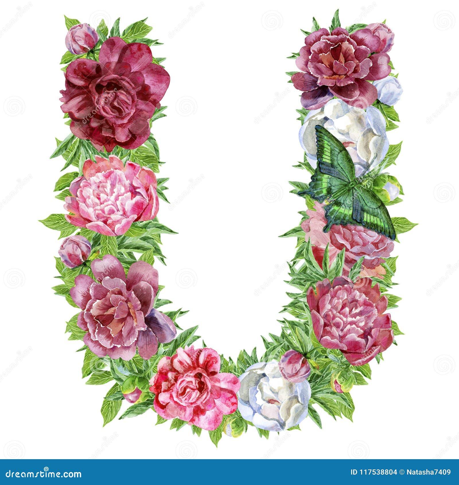 Γράμμα U των λουλουδιών watercolor