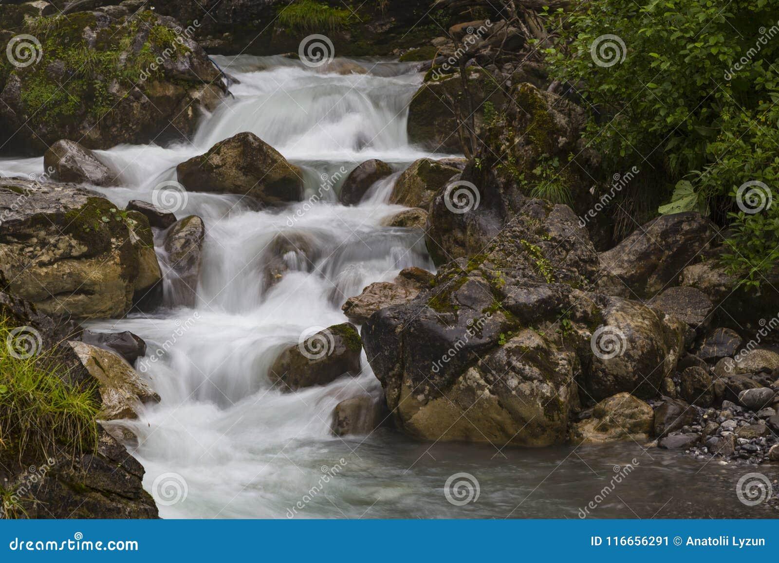 Γρήγορος ποταμός βουνών στο καλοκαίρι