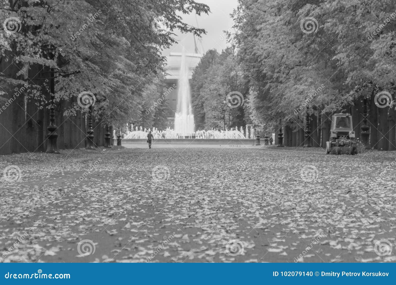 Γραπτός, ο δρόμος με τα πεσμένα φύλλα στο πάρκο το φθινόπωρο
