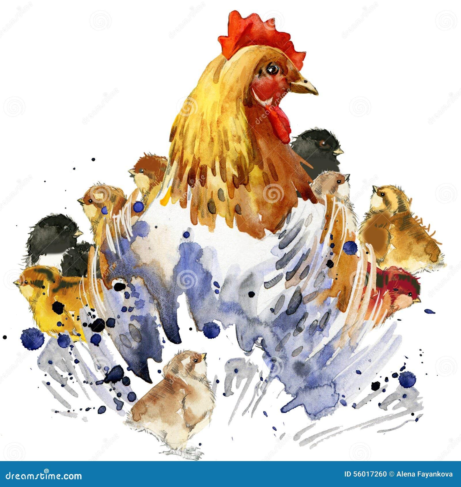 Γραφική παράσταση κοτών κοτόπουλου και μπλουζών κοτόπουλων, οικογενειακή απεικόνιση κοτόπουλου με το κατασκευασμένο υπόβαθρο wate