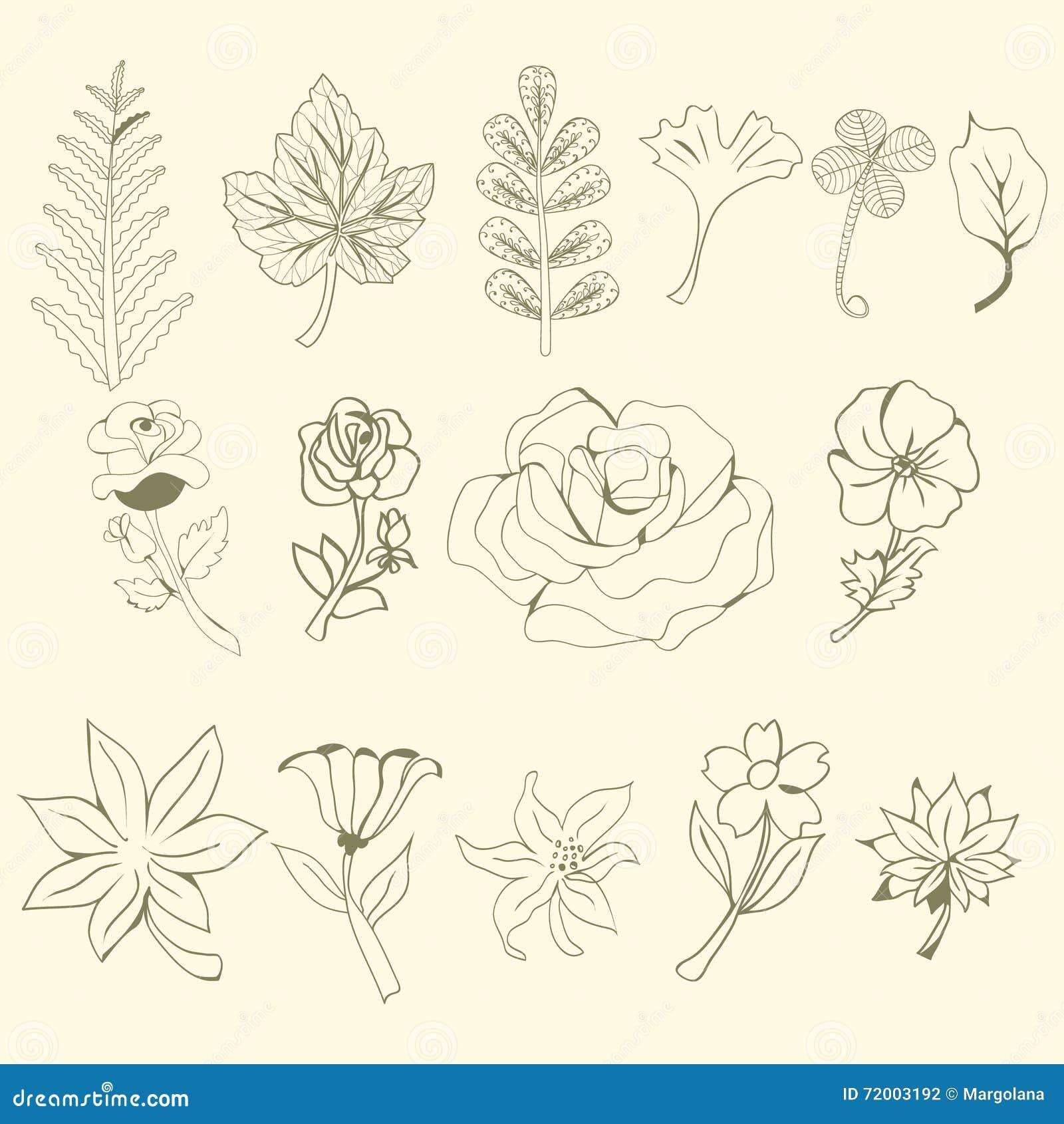 Γραφική συλλογή με τα φύλλα και τα λουλούδια, που σύρουν τα στοιχεία