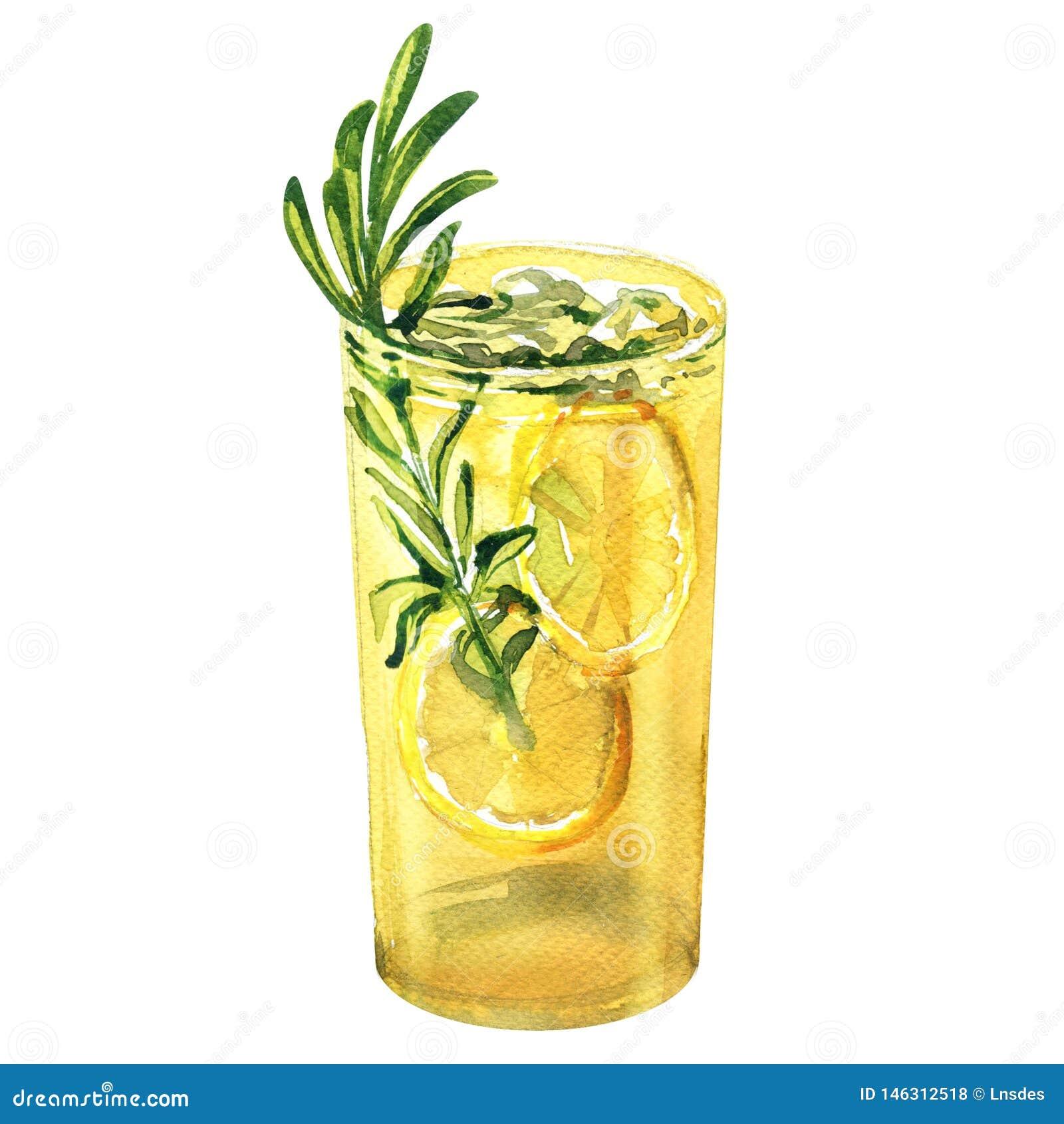 Γυαλί της αναζωογόνησης του κοκτέιλ, χυμός λεμονιών με το λεμόνι, δεντρολίβανο, τονωτικό τζιν, λεμονάδα, ποτό, που απομονώνεται,