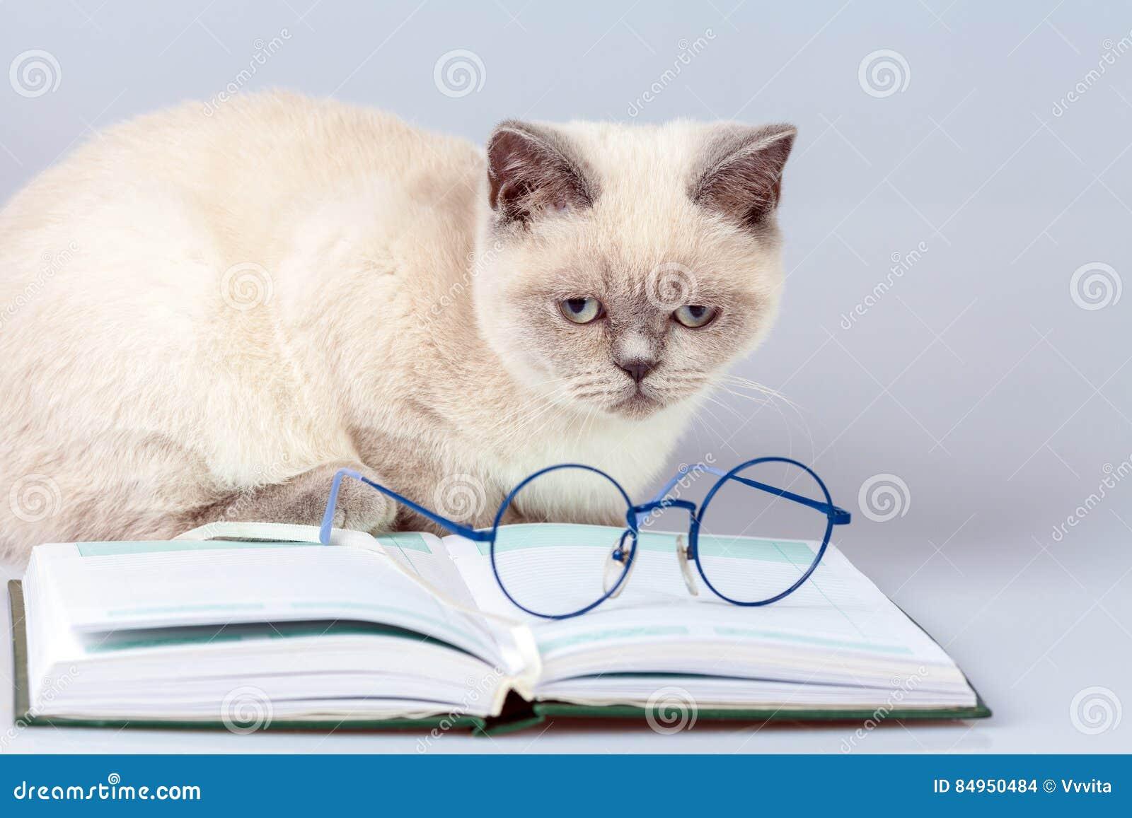 Γυαλιά, που βρίσκονται στο βιβλίο