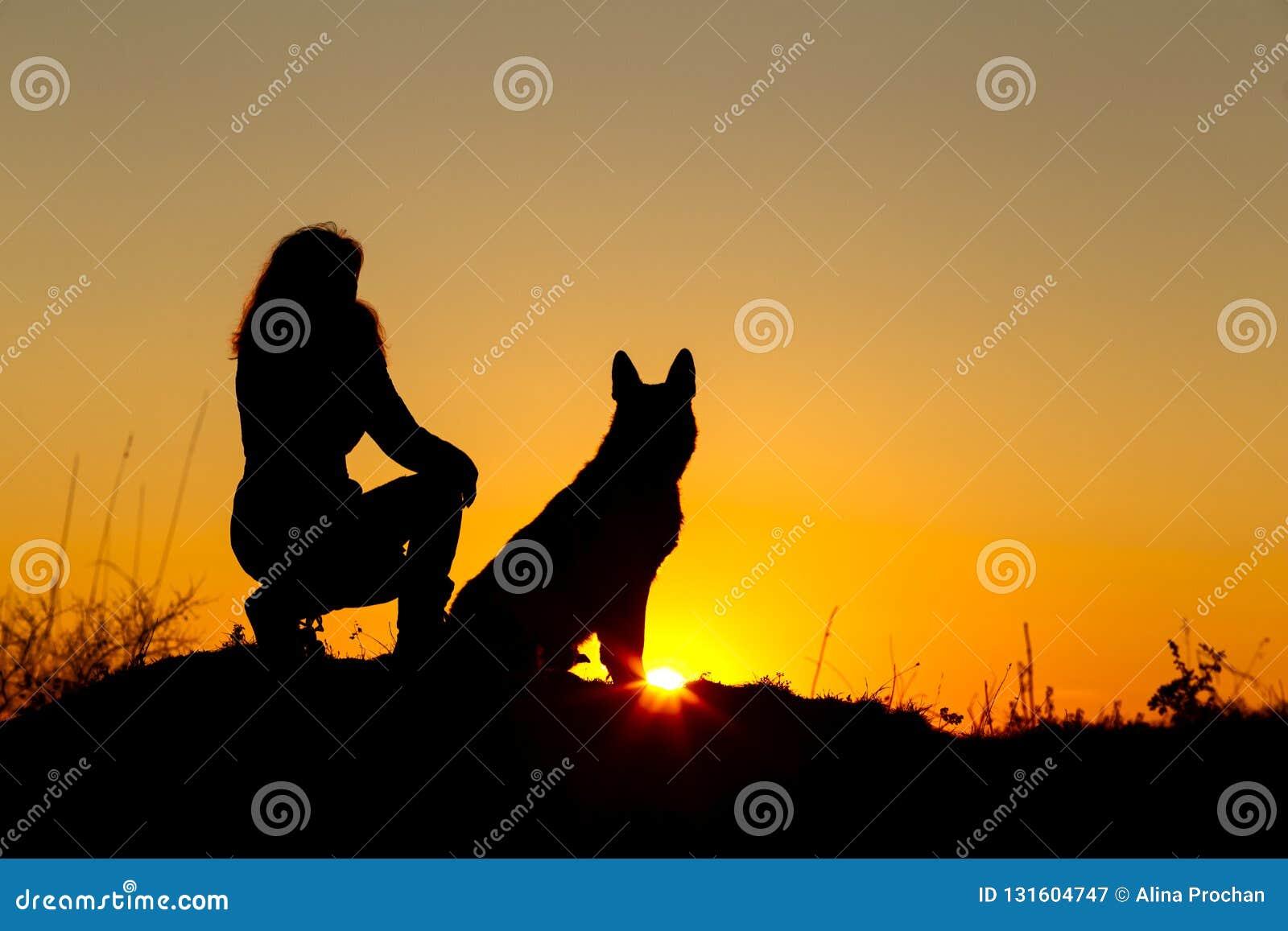 Γυναίκα σκιαγραφιών που περπατά με ένα σκυλί στον τομέα στο ηλιοβασίλεμα, συνεδρίαση κατοικίδιων ζώων κοντά στο πόδι του κοριτσιο