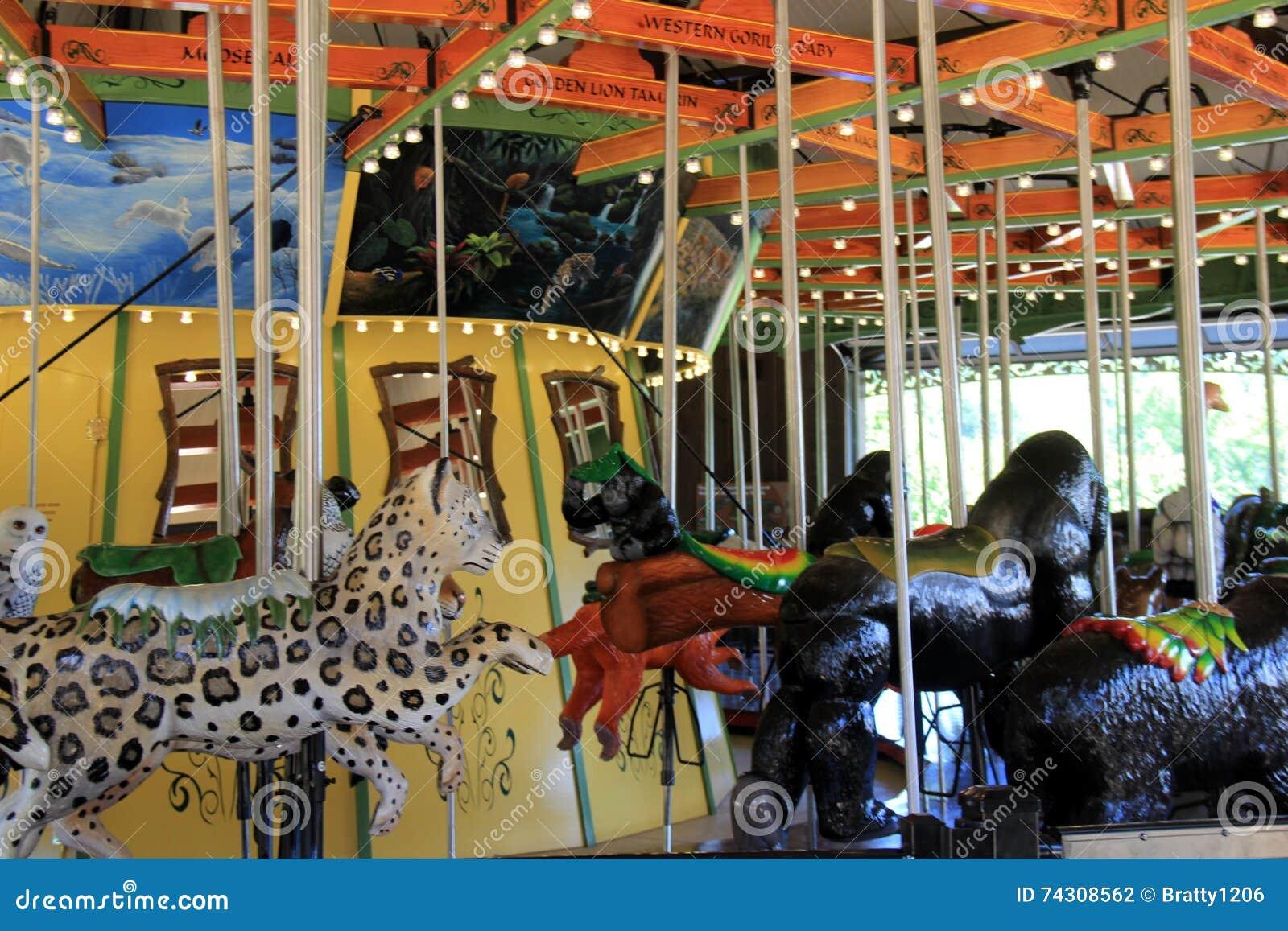Γύρος ιπποδρομίων διασκέδασης με διάφορα άγρια ζώα για να επιλέξει από, ζωολογικός κήπος του Κλίβελαντ, Οχάιο, 2016