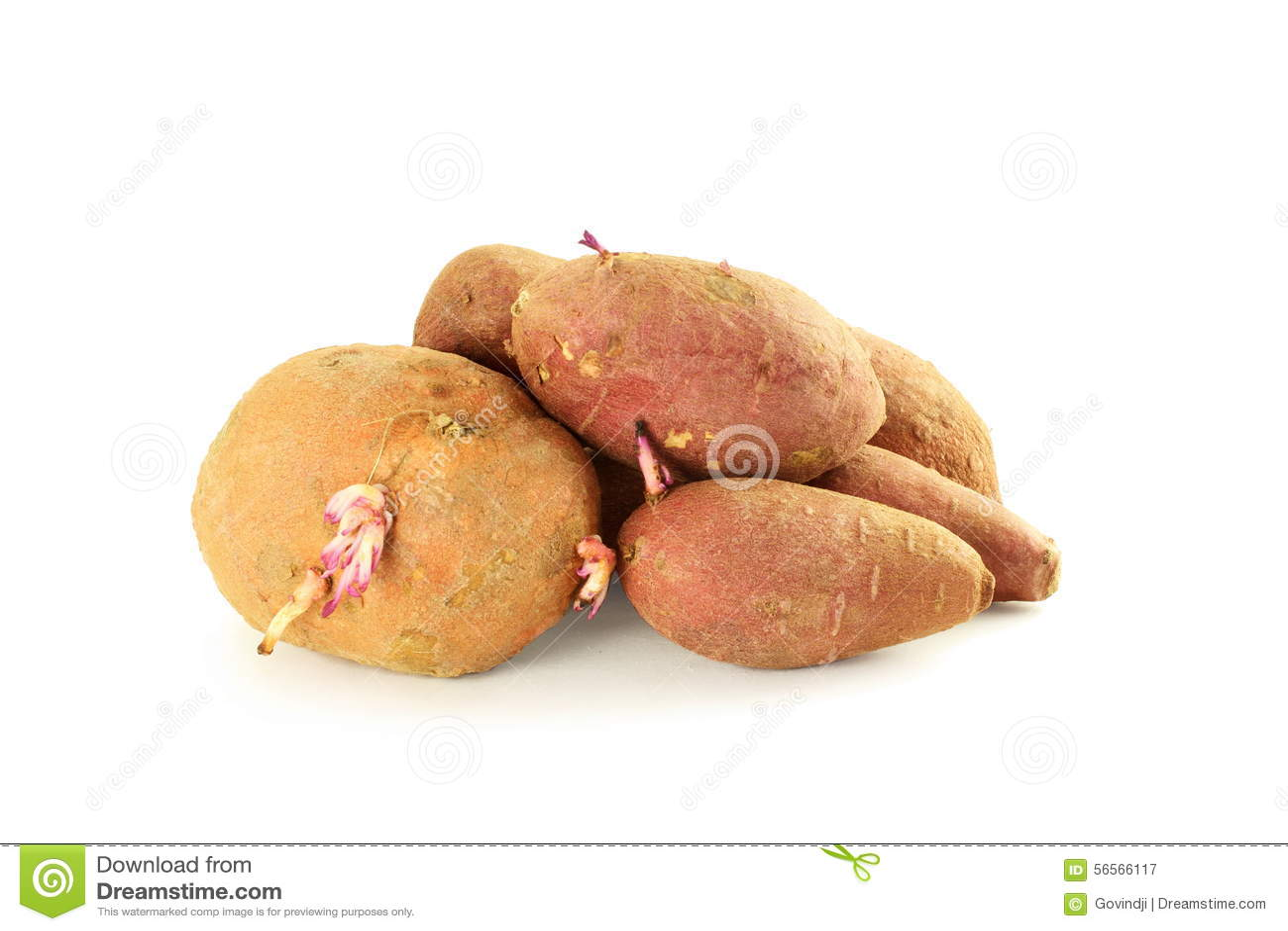 Download Γλυκιά πατάτα στην άσπρη ανασκόπηση Στοκ Εικόνα - εικόνα από closeup, υγιής: 56566117