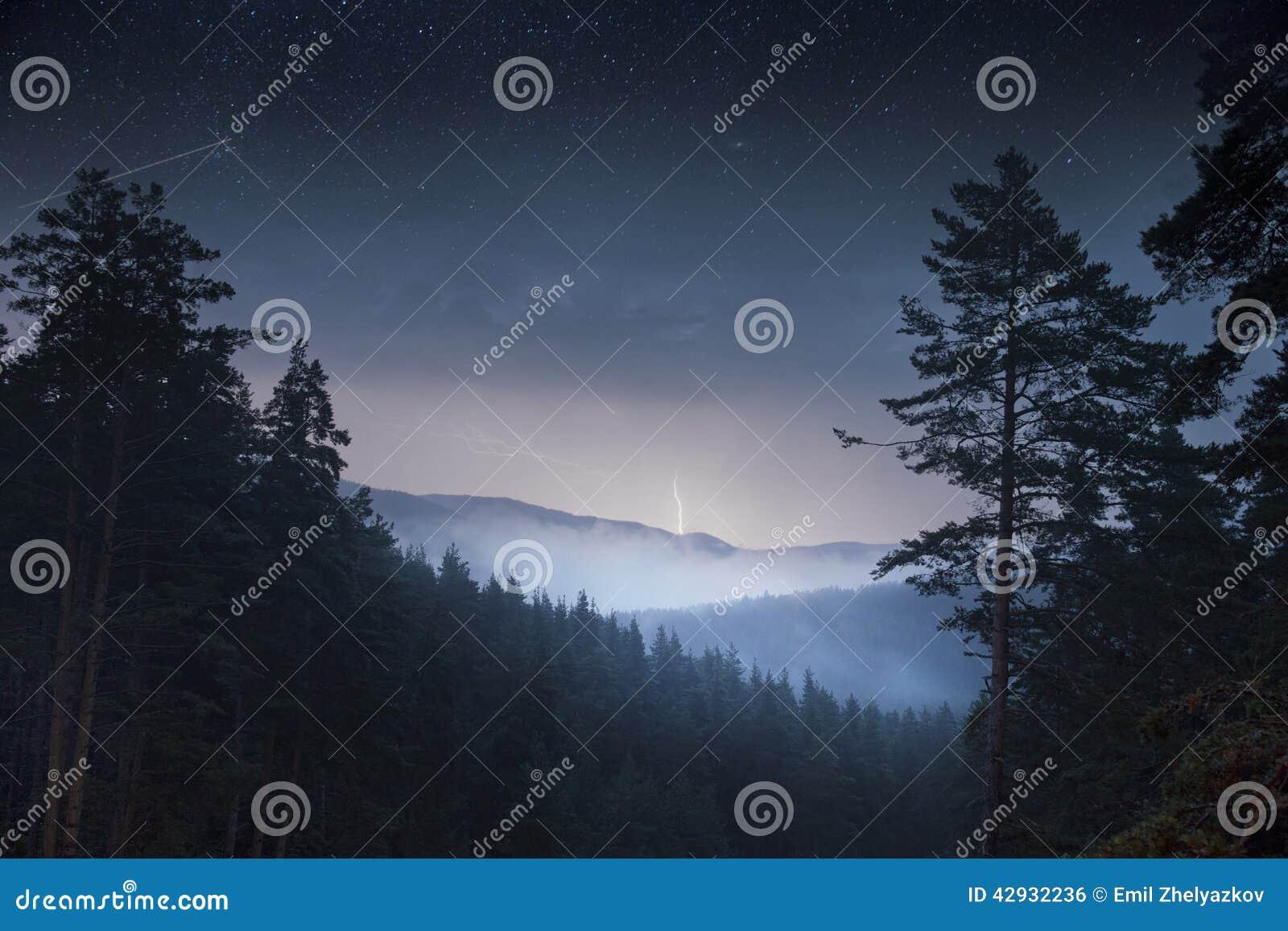 Δάσος δέντρων πεύκων νύχτας & βουνό και βροντή