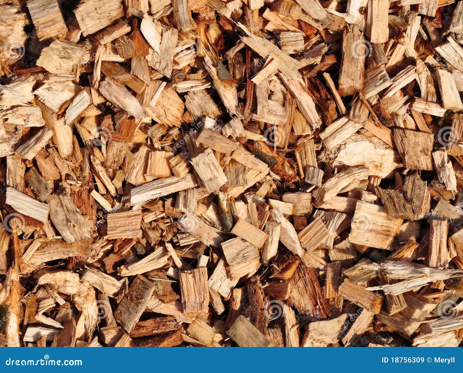 δάσος τσιπ