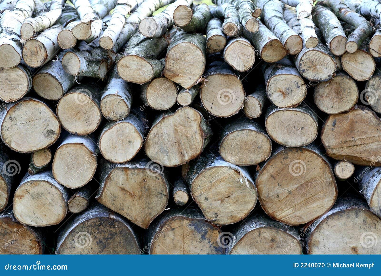 δάσος