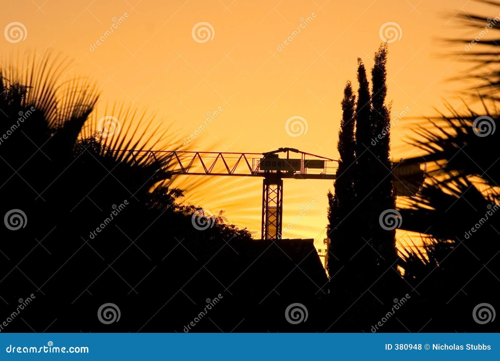 δέντρα ηλιοβασιλέματος &si
