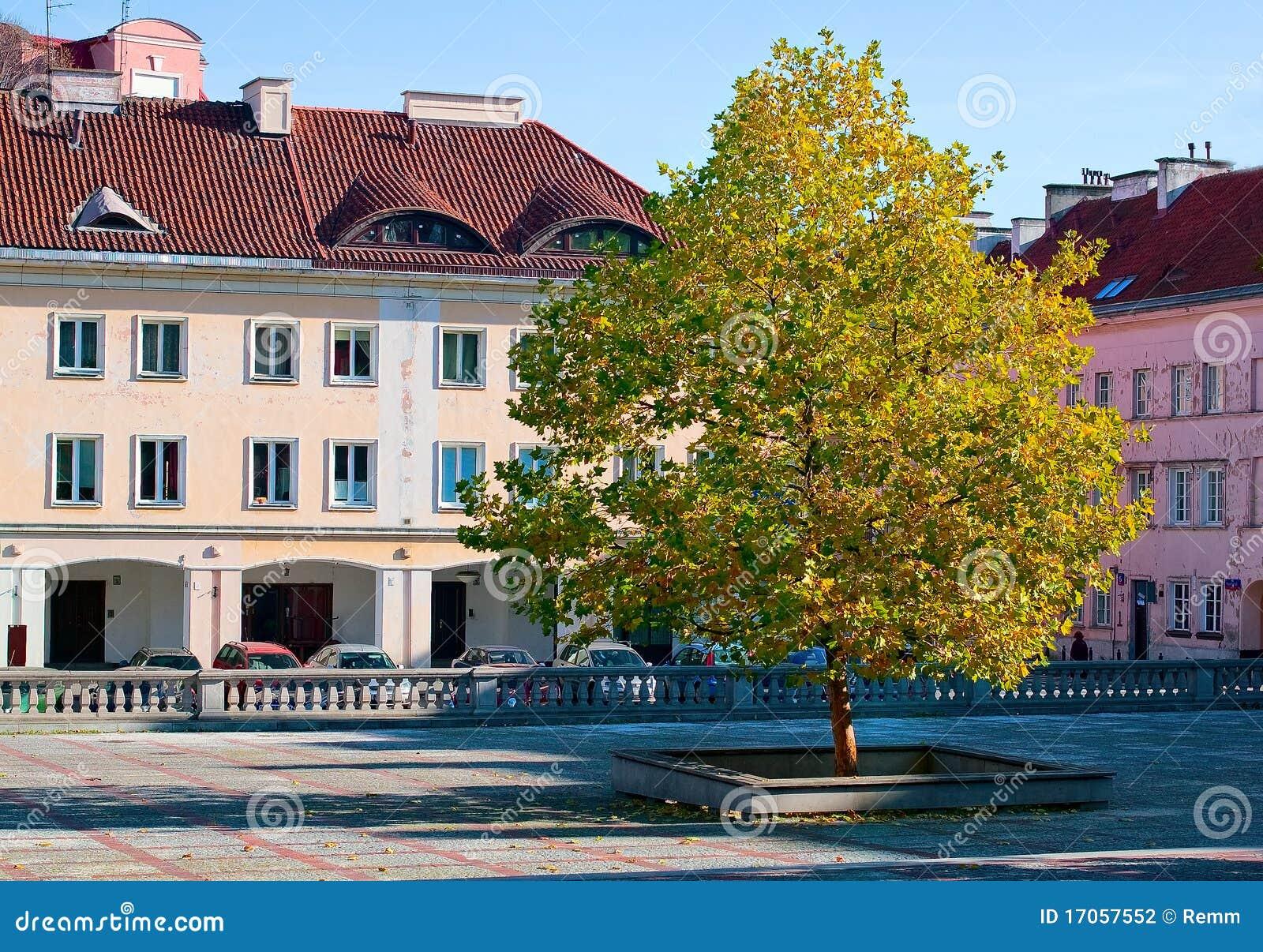 δέντρο κτηρίων