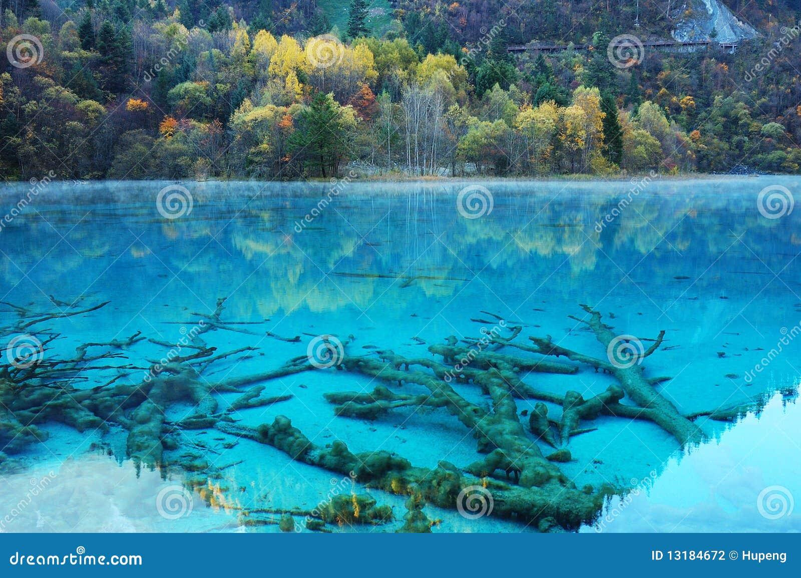 δέντρο λιμνών jiuzhaigou φθινοπώρου