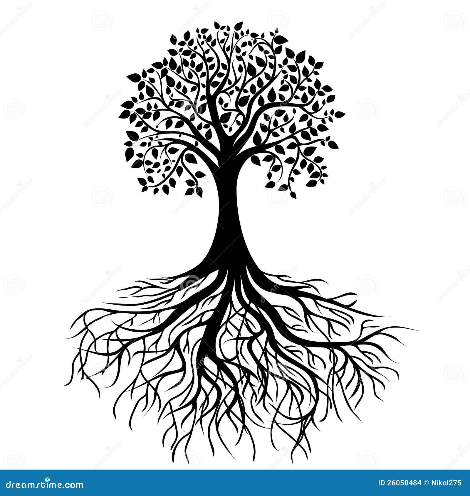 Δέντρο με τις ρίζες