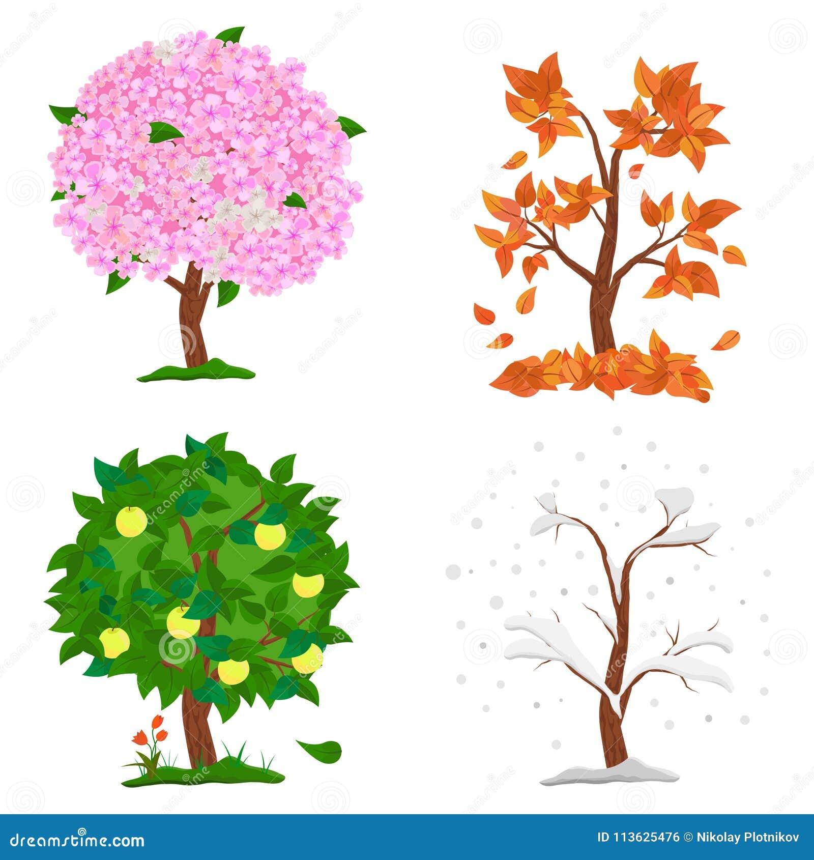 a41451ac30 Δέντρο σε τέσσερις εποχές - άνοιξη