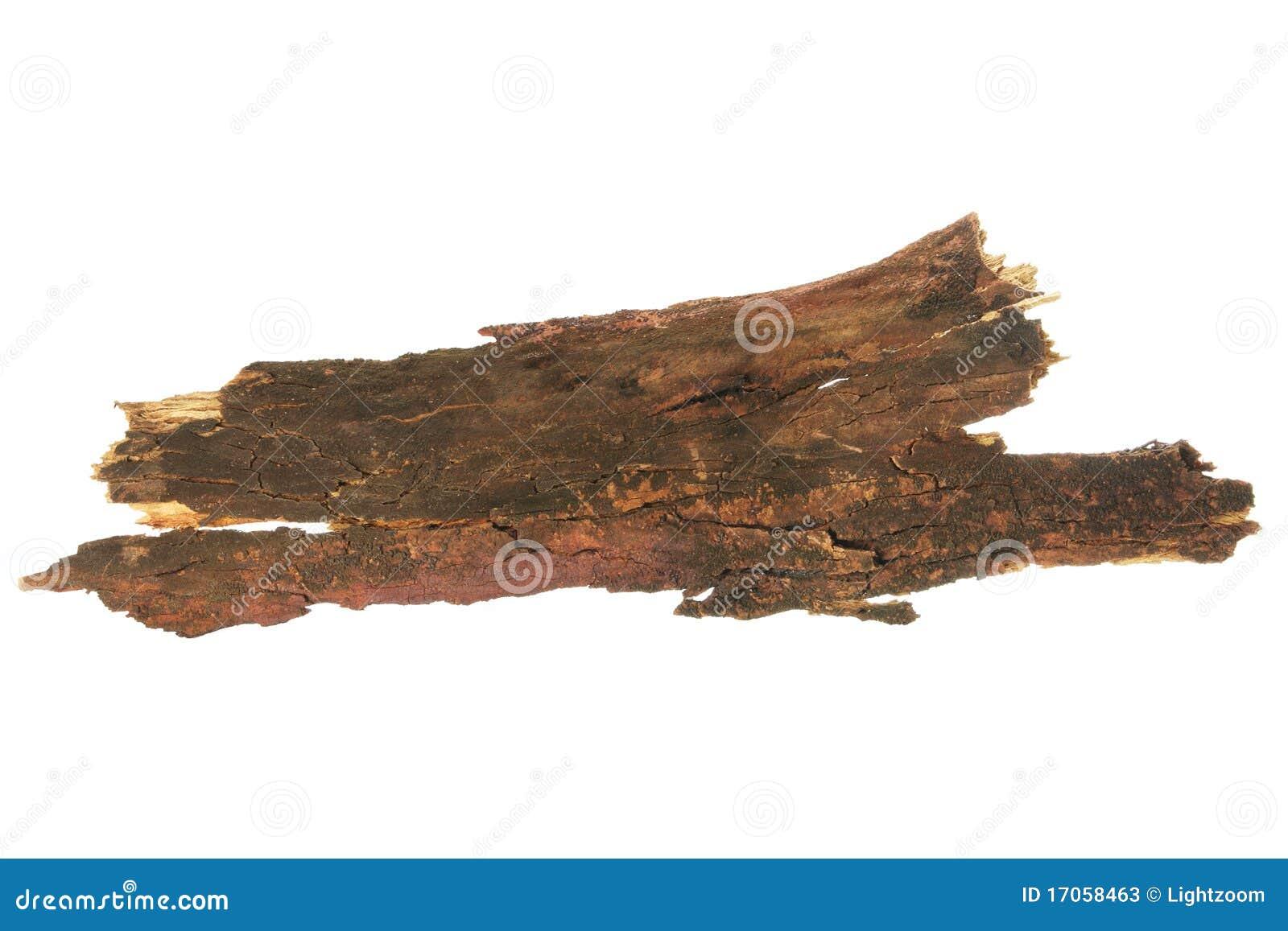 δέντρο φλοιών
