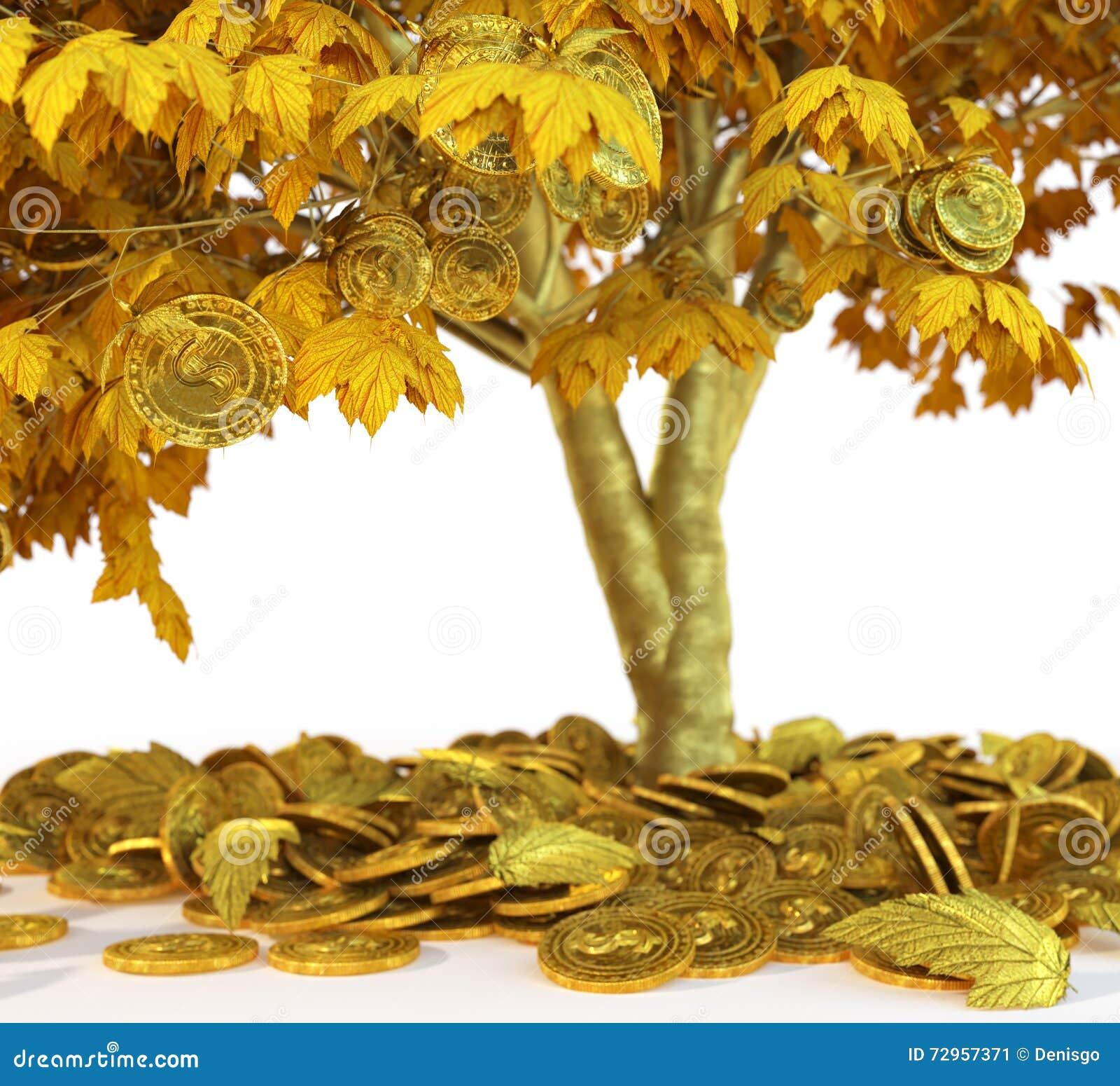 Δέντρο χρημάτων με του νομίσματος στενό σε επάνω υποβάθρου απομονώσεων άσπρο