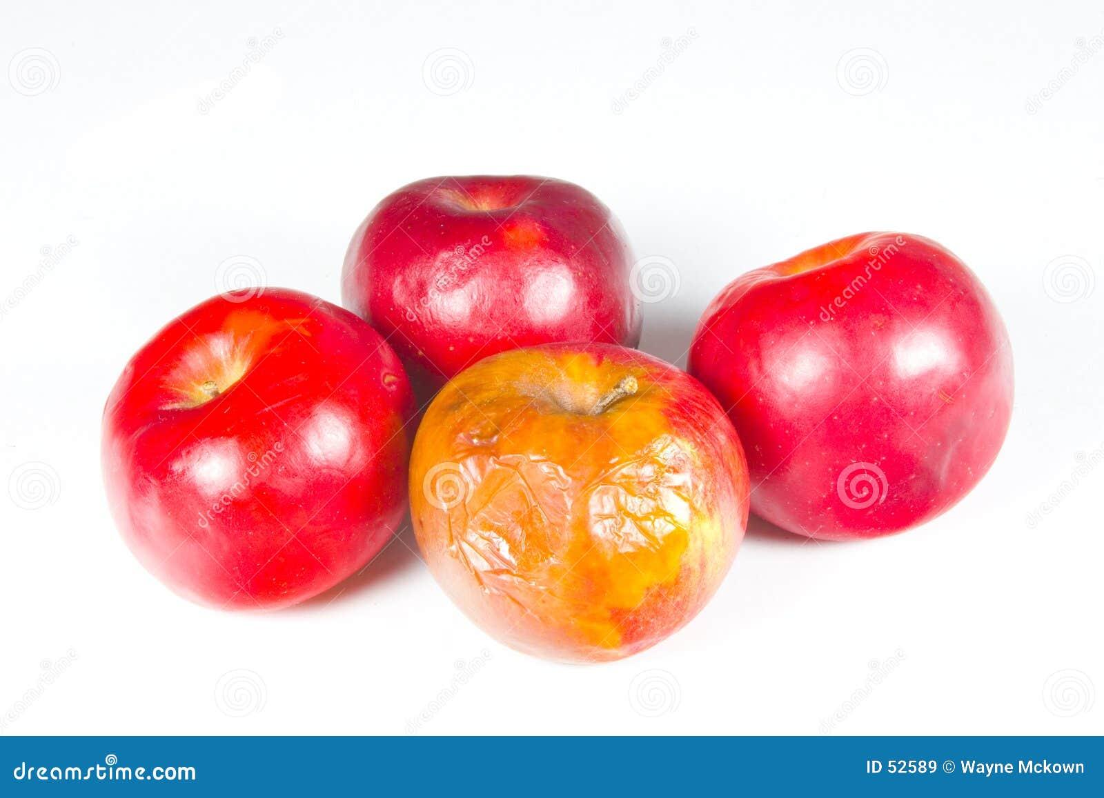 δέσμη μήλων σάπια