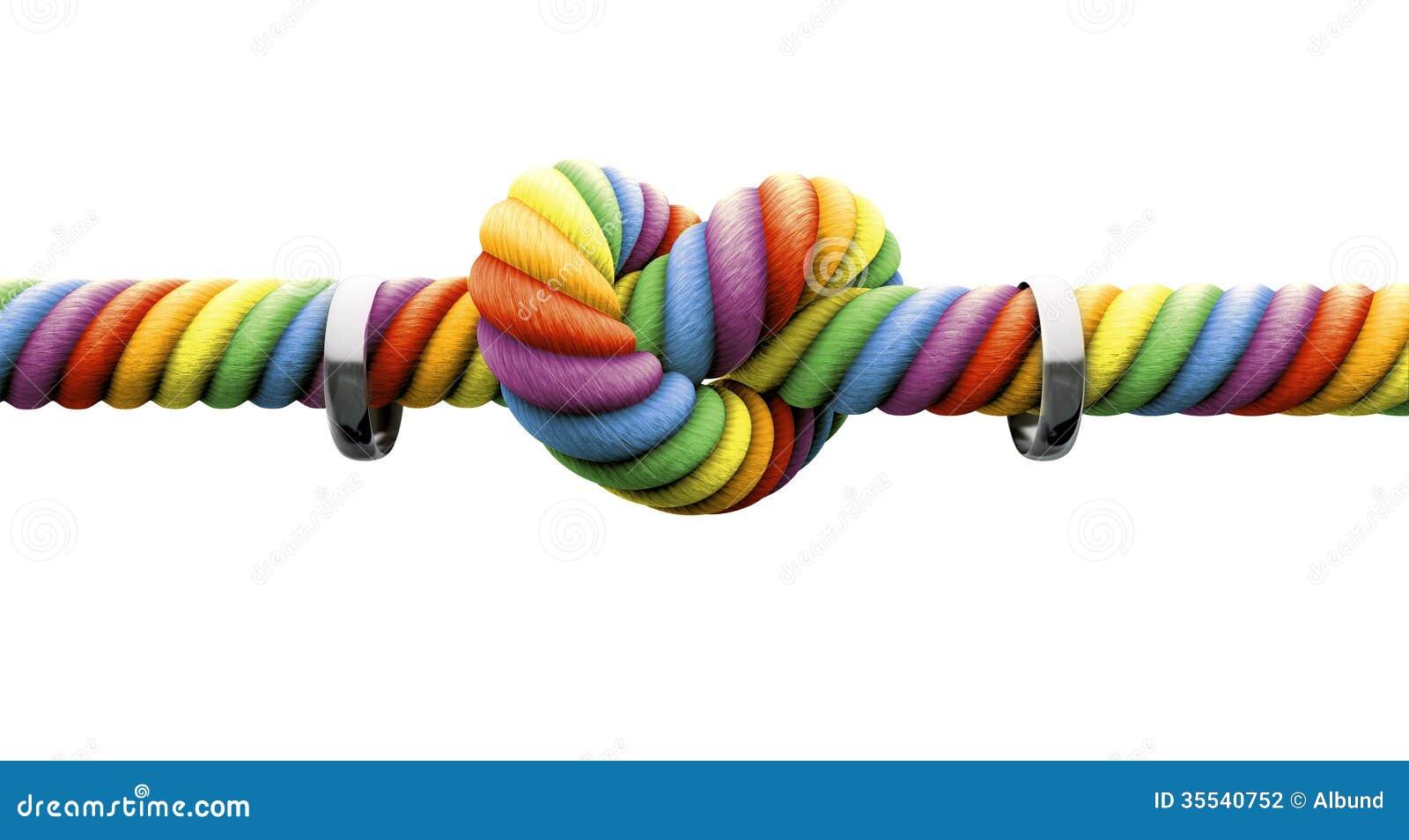 Δέστε τον κόμβο με το γάμο ομοφυλοφίλων δαχτυλιδιών