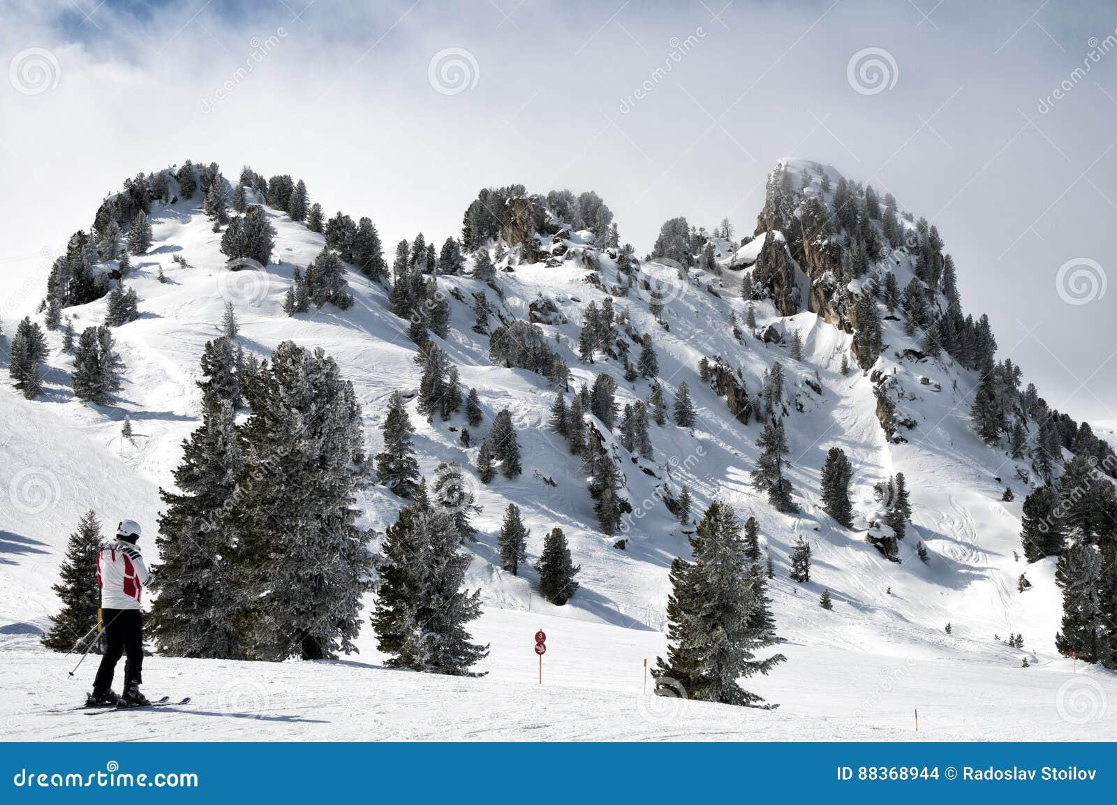 Δασική κάνοντας σκι χώρα σε mayrhofen-Hippach