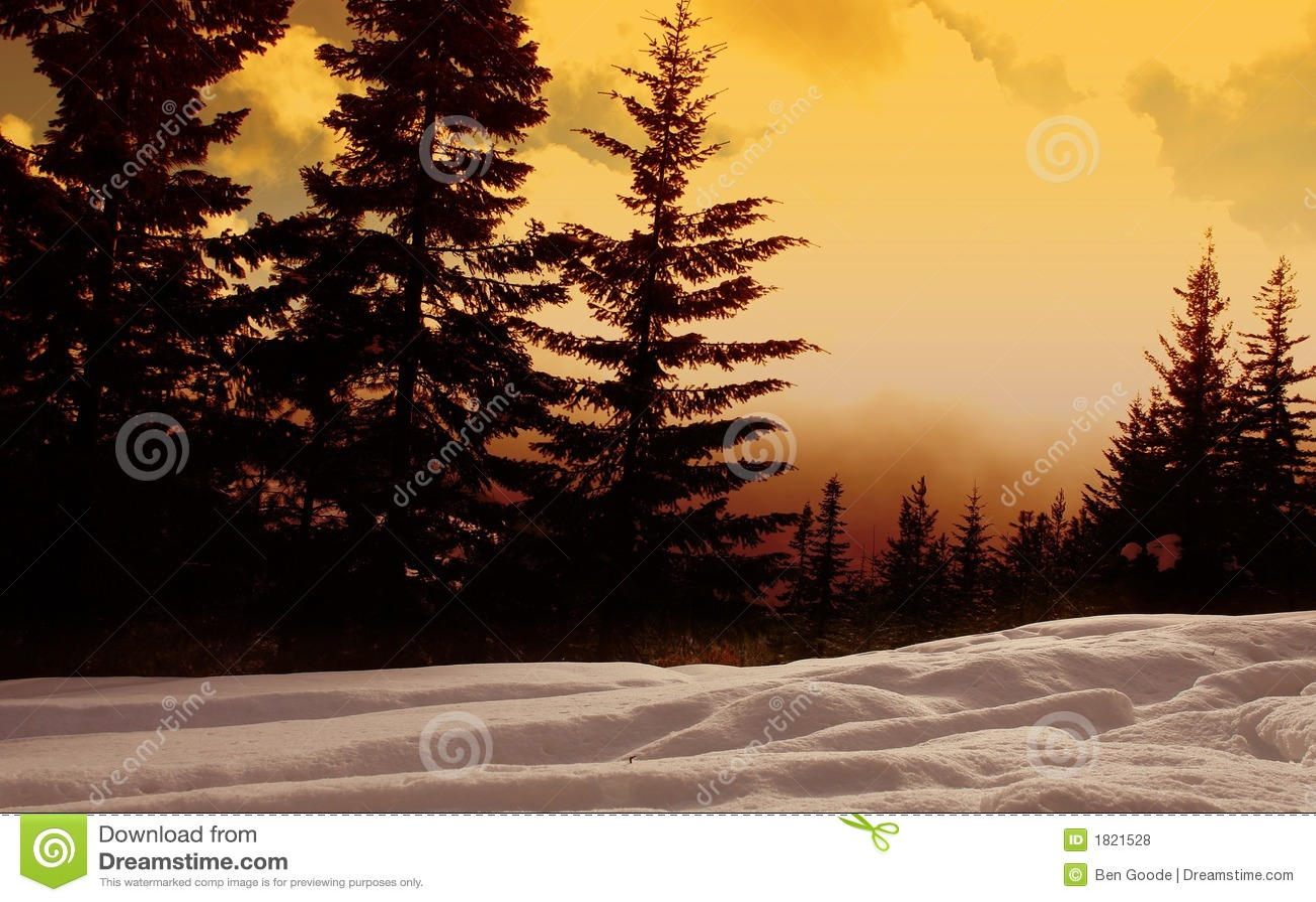 δασικό ηλιοβασίλεμα