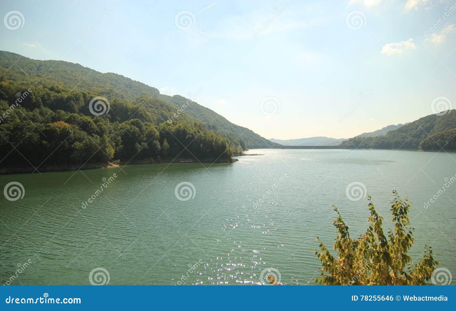 Δασώδες τοπίο βουνών και ποταμών