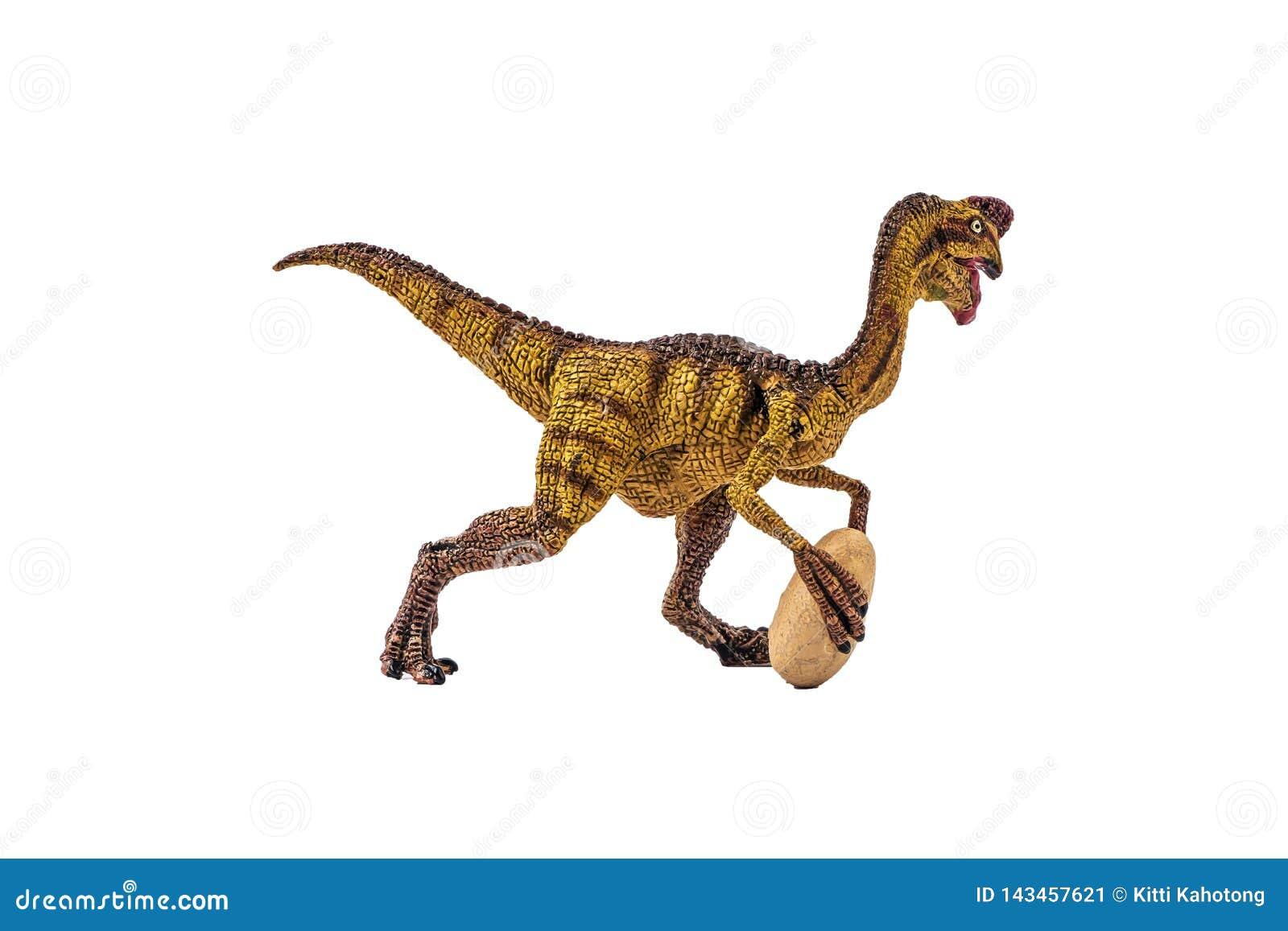 Δεινόσαυρος Oviraptor στο άσπρο υπόβαθρο