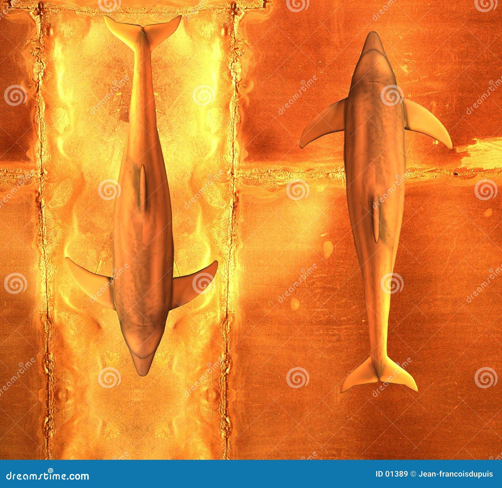 δελφίνια δύο