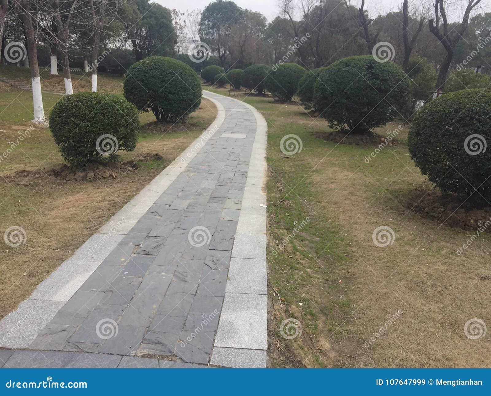 Διάδρομοι και διάδρομοι στο πάρκο