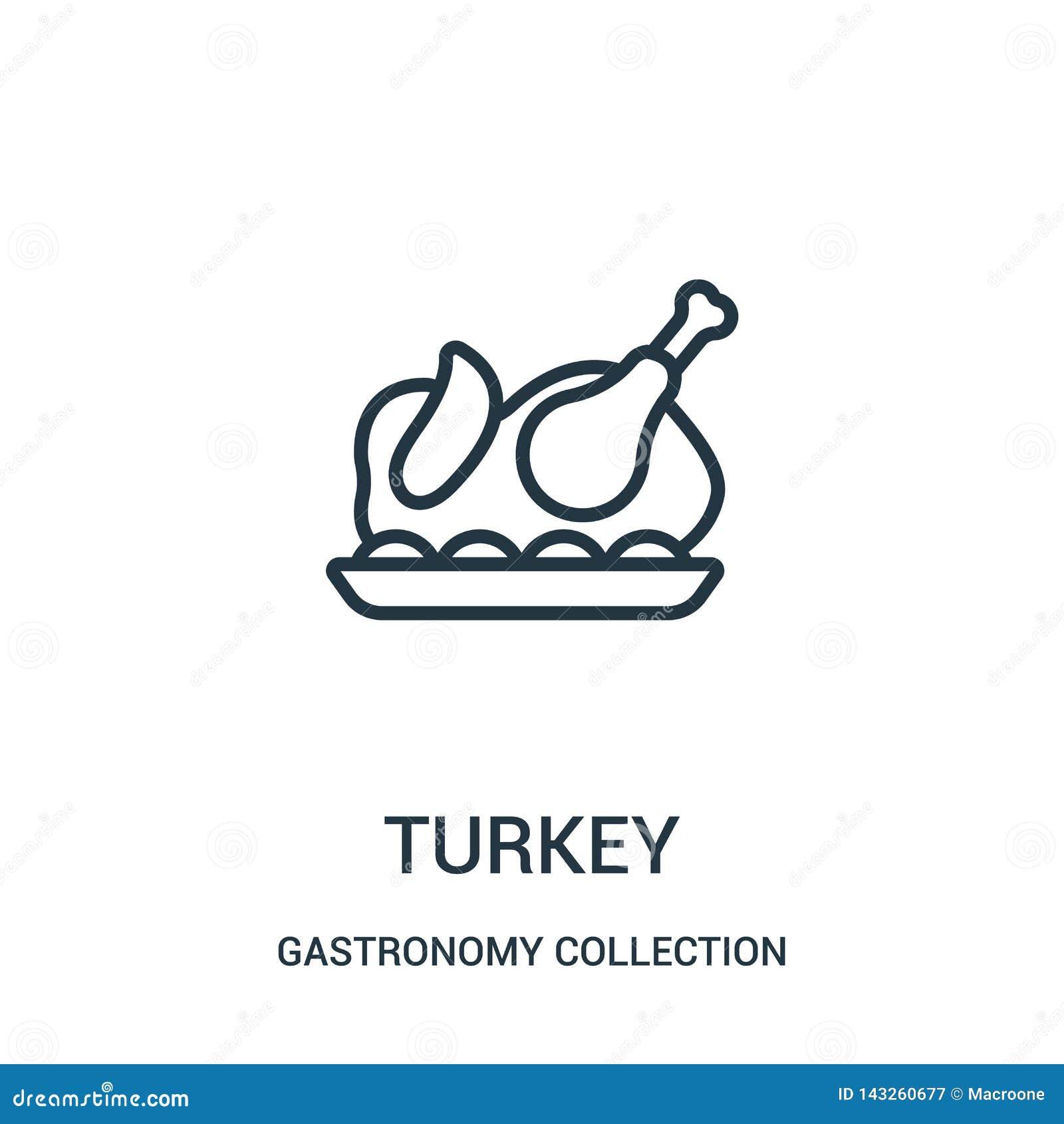 διάνυσμα εικονιδίων της Τουρκίας από τη συλλογή συλλογής γαστρονομίας Λεπτή διανυσματική απεικόνιση εικονιδίων περιλήψεων της Του
