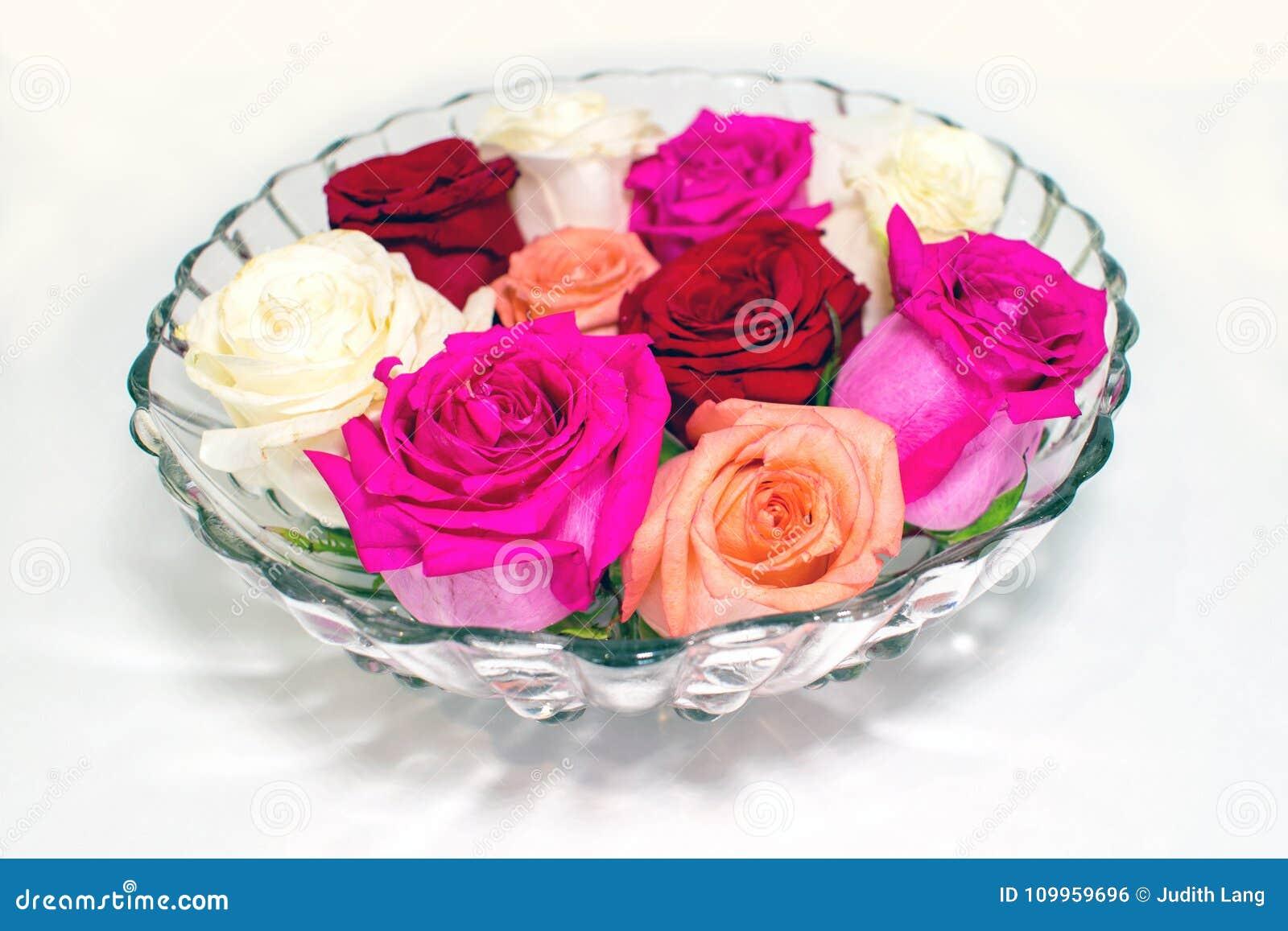 Διάφορα ροδαλά άνθη στο αναδρομικό γυαλί κυλούν