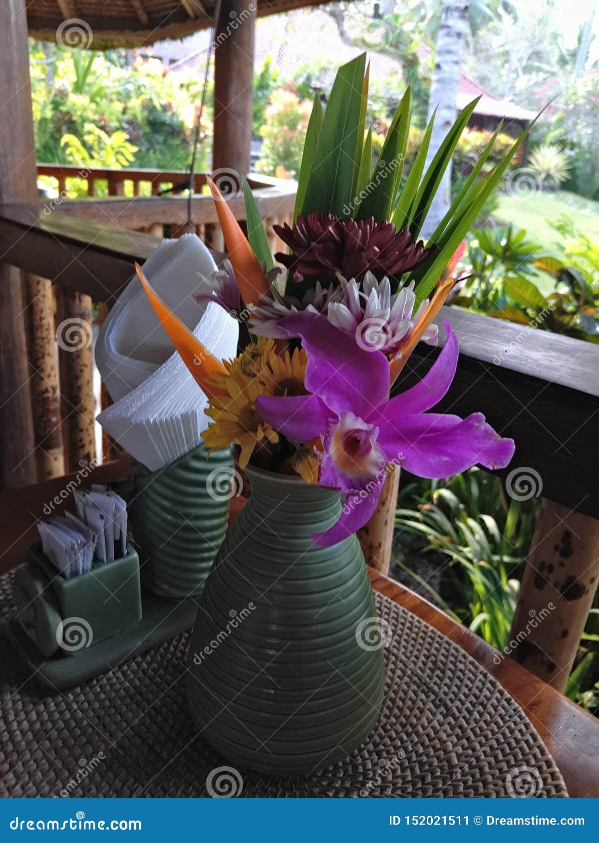 Διακοπές του Μπαλί για τους εραστές λουλουδιών