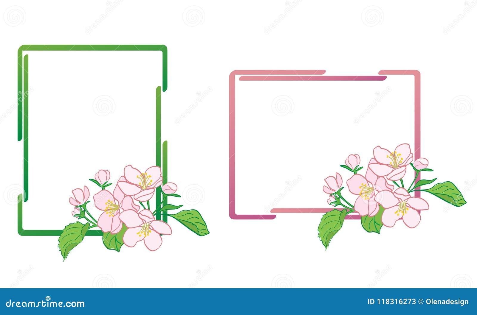 Διακοσμητικά πλαίσια με τα λουλούδια Apple-δέντρων - διάνυσμα
