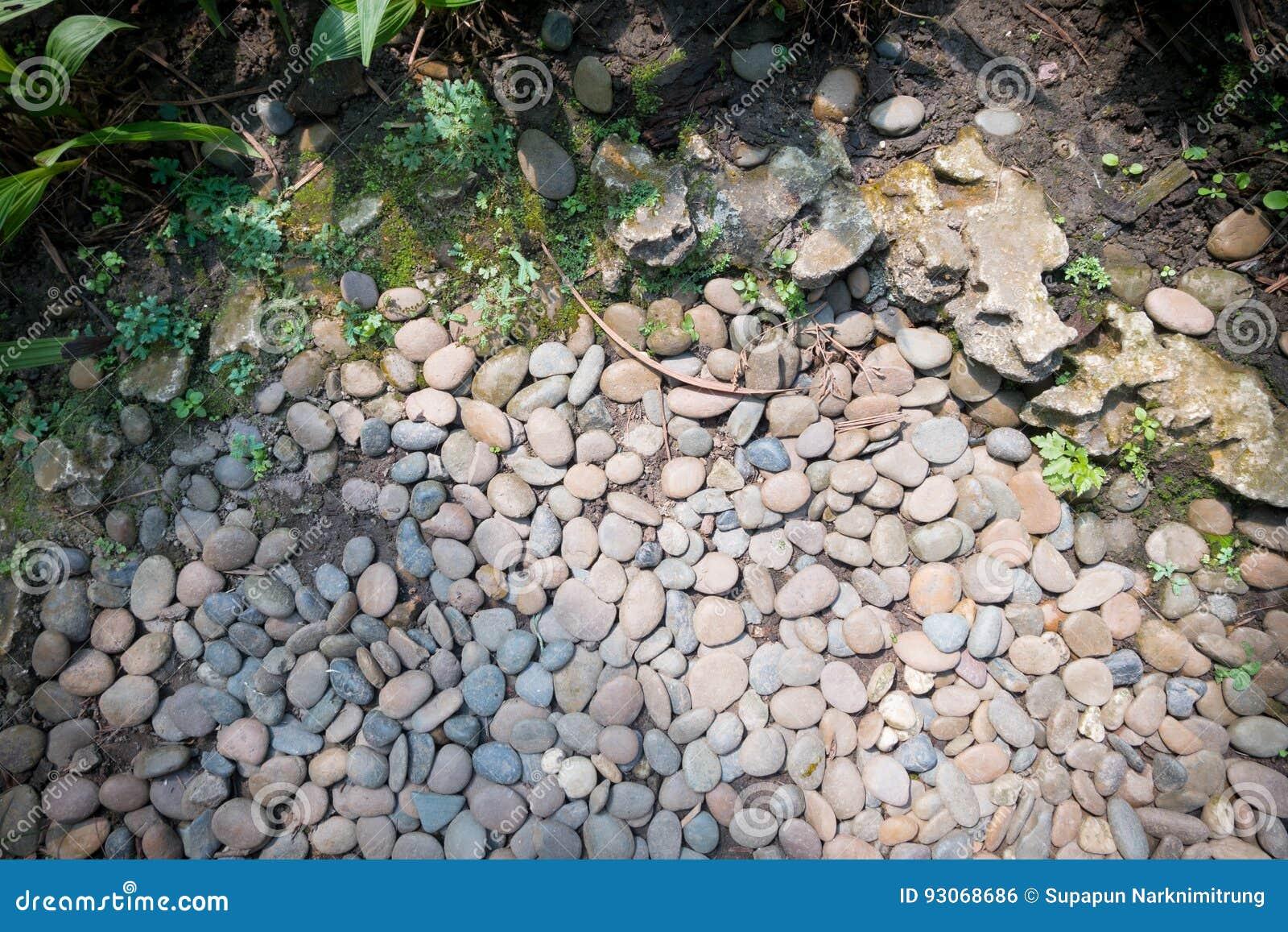 Διακοσμητική πέτρα, υπόβαθρο κήπων πράσινων εγκαταστάσεων στρογγυλό φως της ημέρας σύστασης χαλικιών