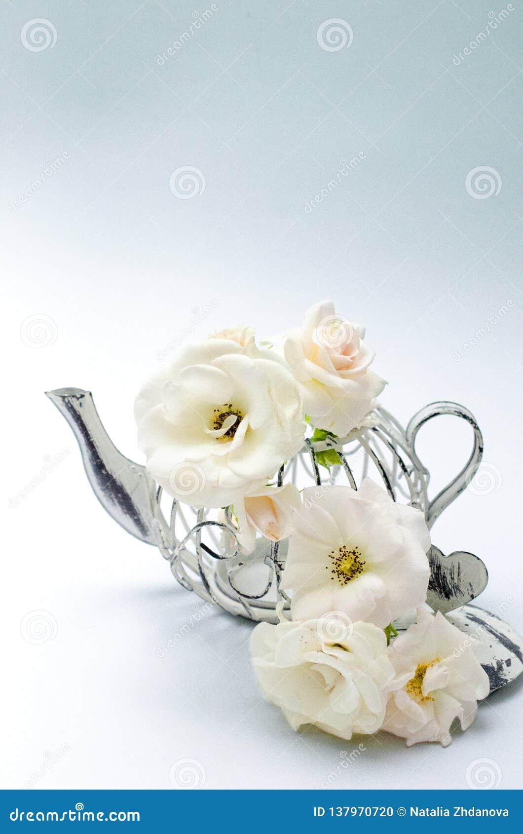 Διακοσμητικό δοχείο τσαγιού με τα άσπρα τριαντάφυλλα κοραλλιών