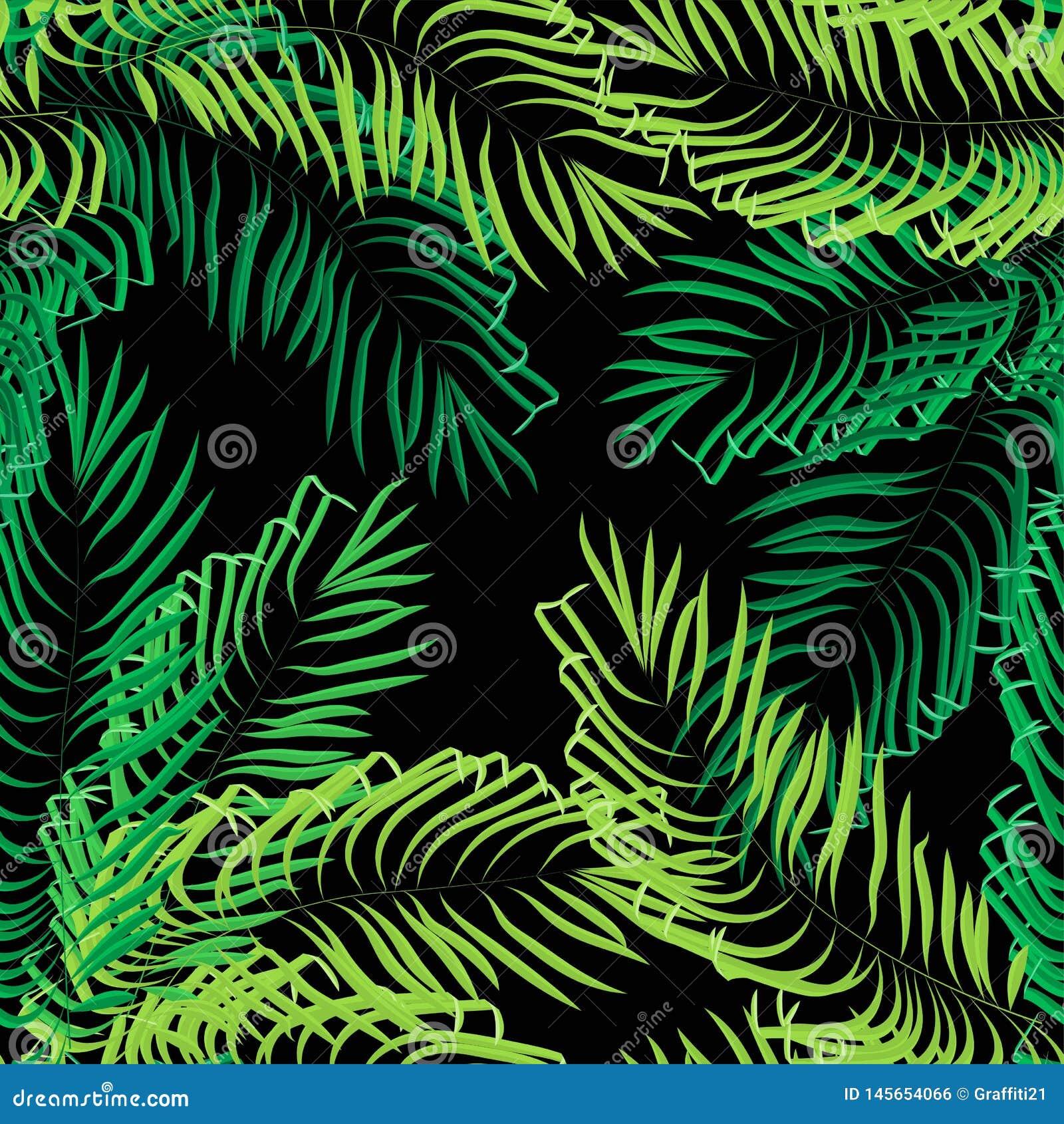 Διανυσματικά άνευ ραφής φύλλα θερινών φοινικών στο μαύρο υπόβαθρο