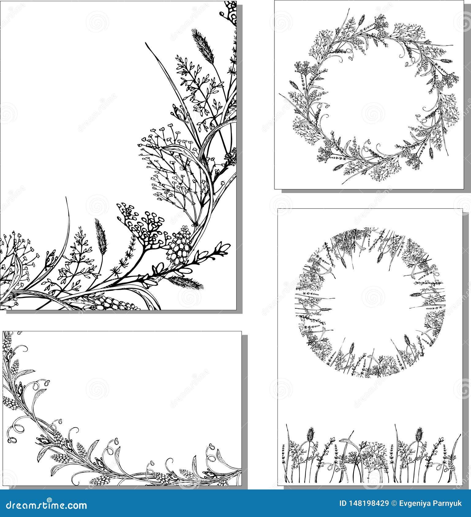 Διανυσματικά floral χορτάρια μορίων απεικόνισης