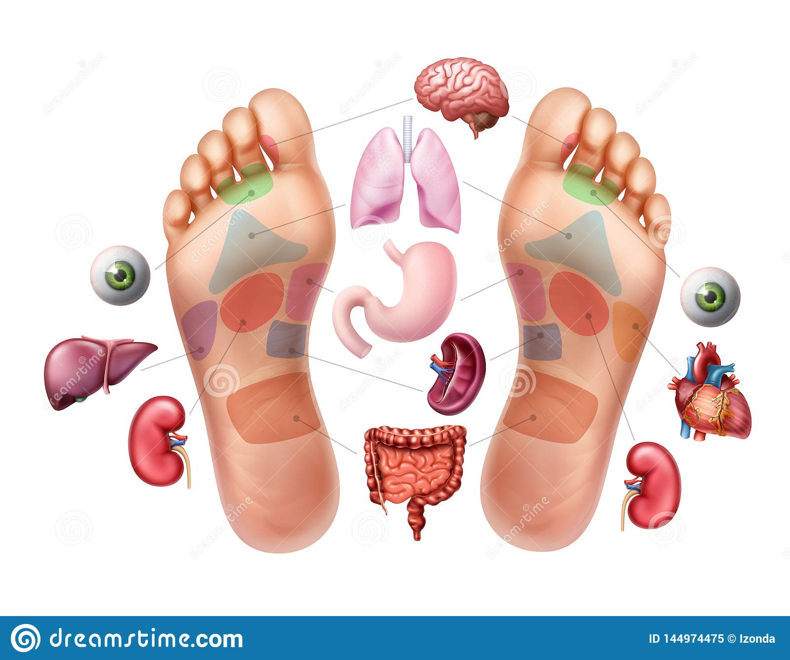 Διανυσματική απεικόνιση των πελμάτων των ποδιών με χαρακτηρισμένος α