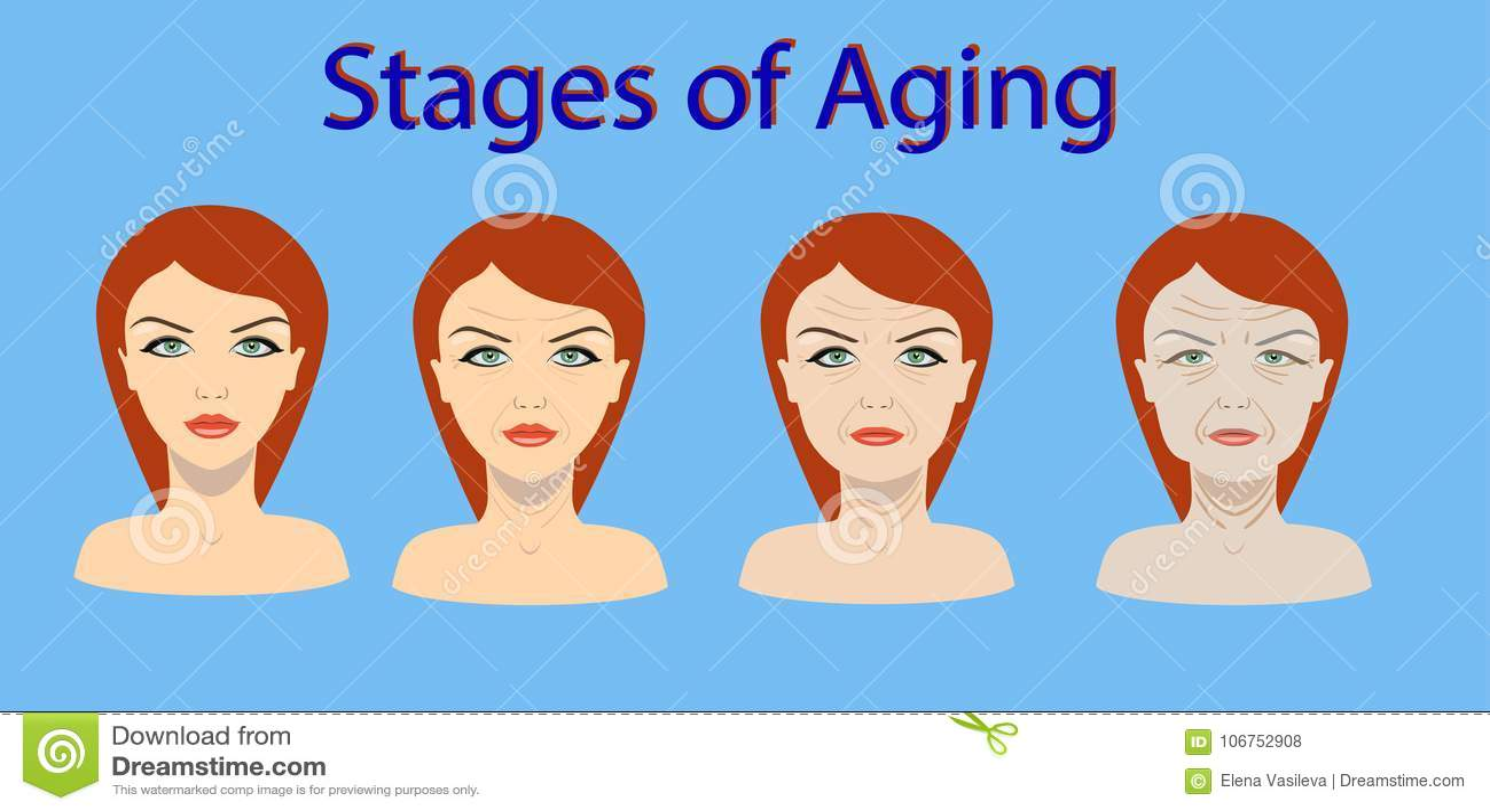 Διανυσματική διαδικασία γήρανσης Τέσσερα στάδια της αλλαγής προσώπου