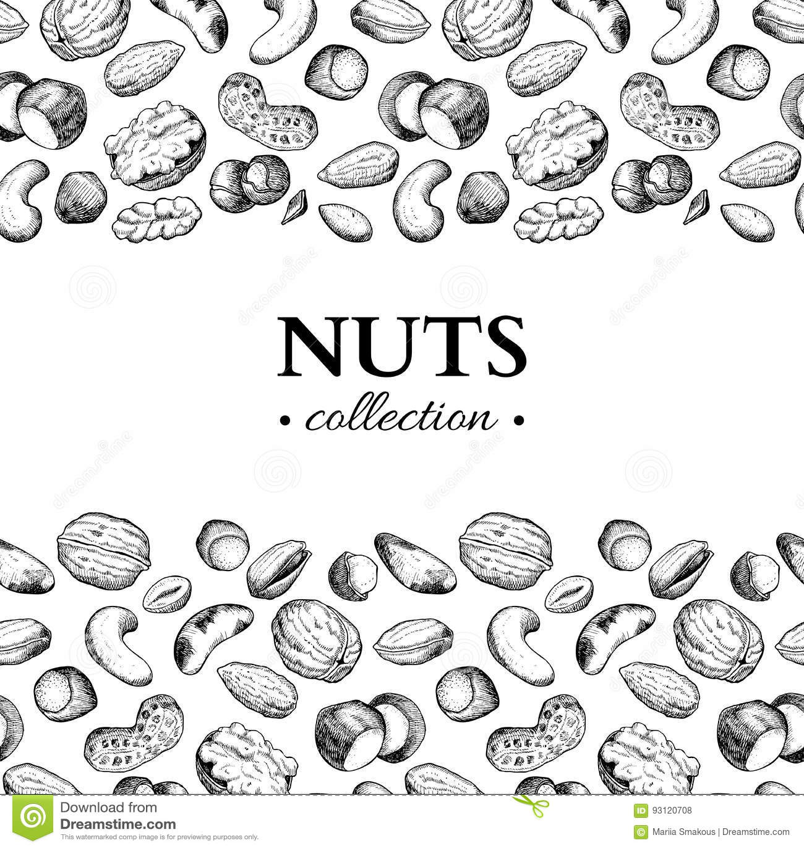 Διανυσματική εκλεκτής ποιότητας απεικόνιση πλαισίων καρυδιών Συρμένα χέρι χαραγμένα αντικείμενα τροφίμων