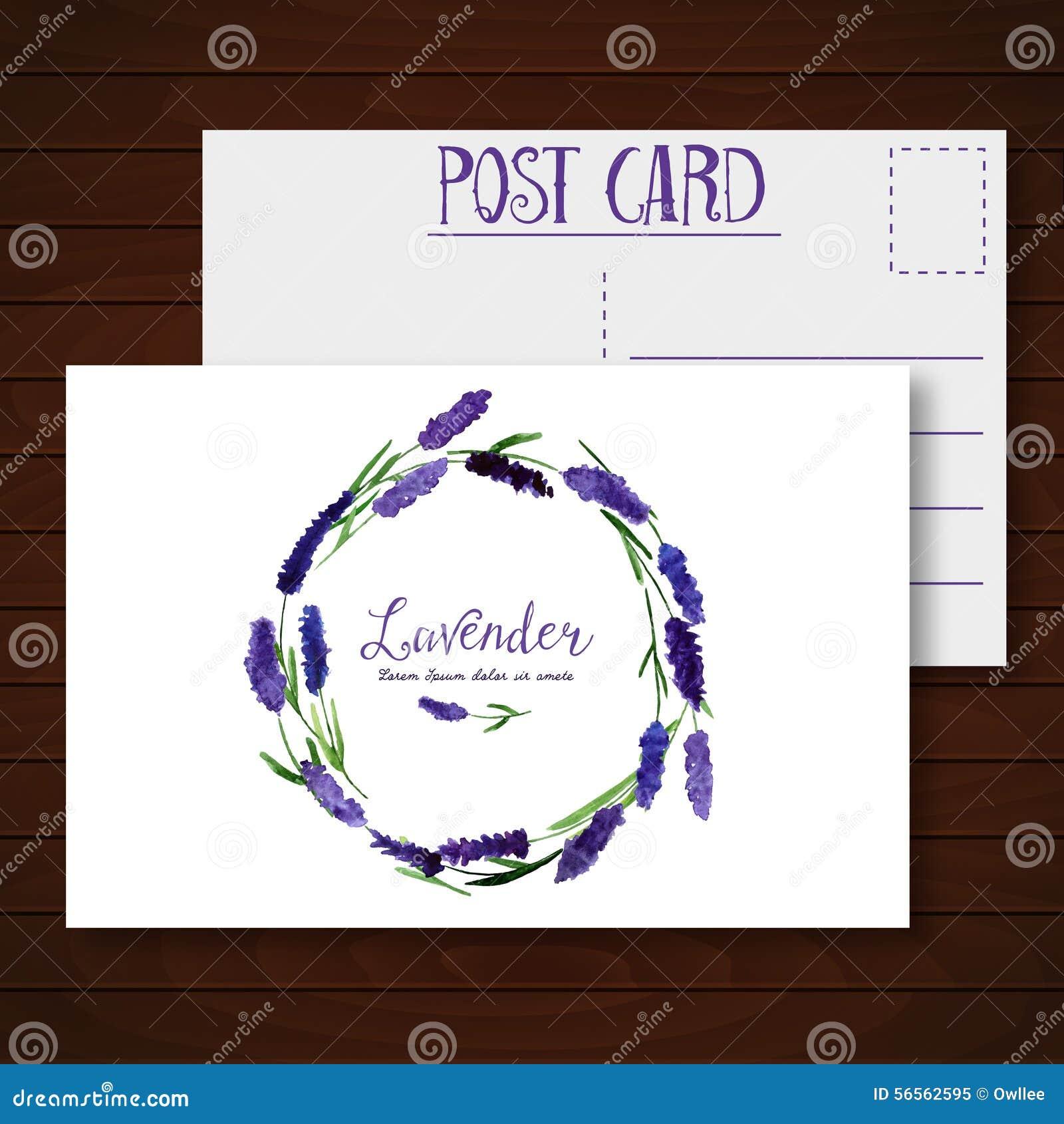 Download Διανυσματική ευχετήρια κάρτα με Lavender Watercolor Διανυσματική απεικόνιση - εικονογραφία από πρόσκληση, φυσικός: 56562595