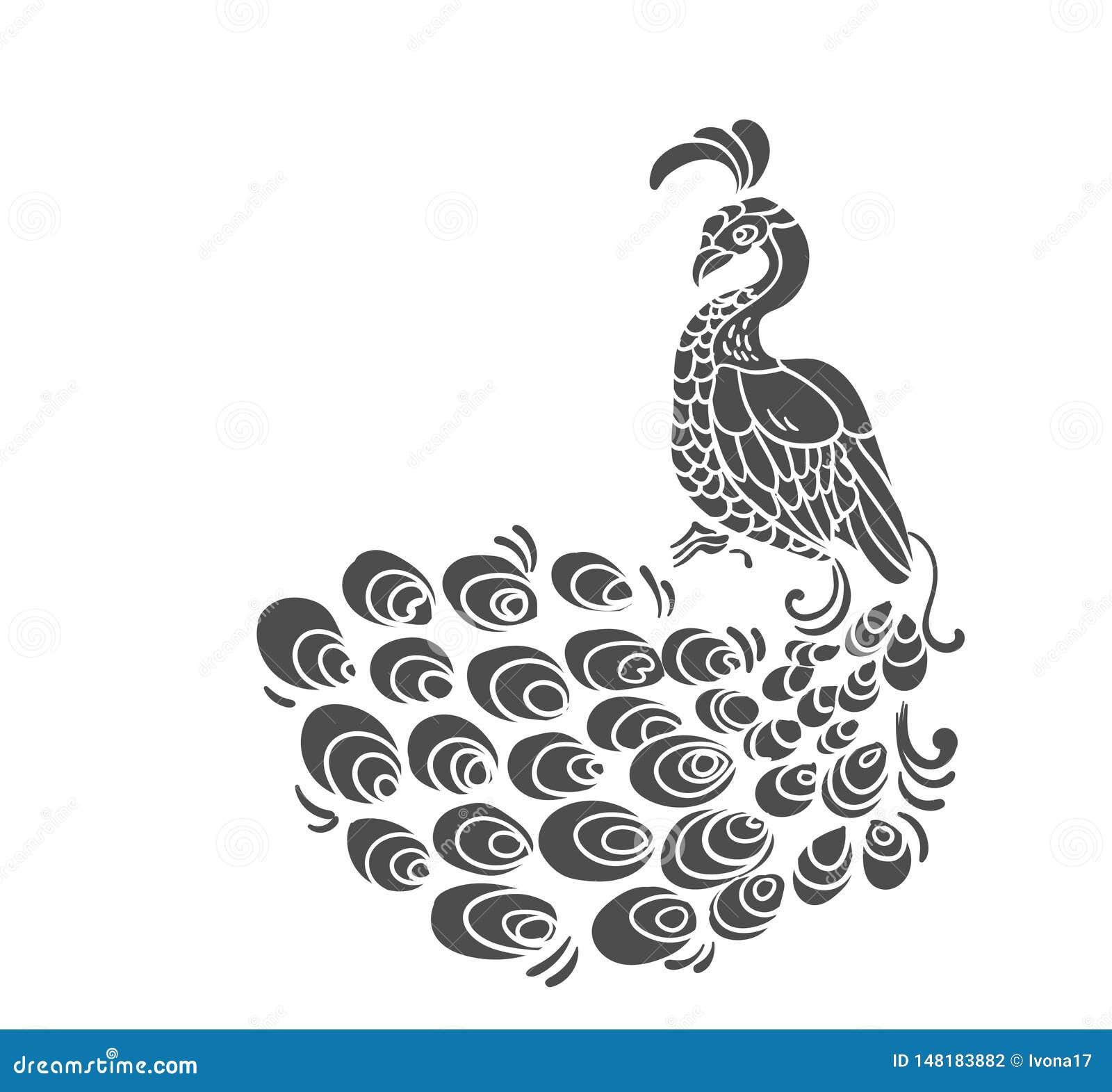Διανυσματική πουλιών peacock τέχνη συνδετήρων σχεδίων peacock απομονωμένη