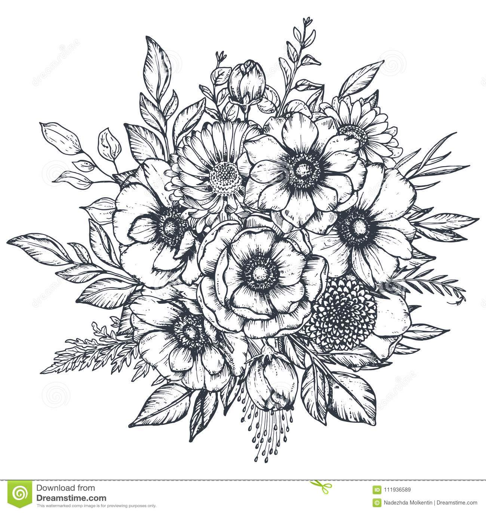 Διανυσματική floral σύνθεση συρμένων των χέρι λουλουδιών anemone